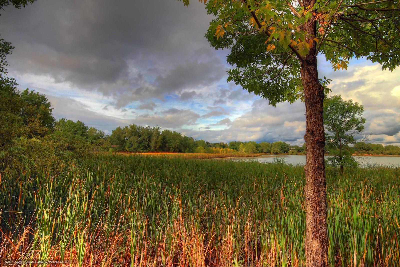 下载壁纸 秋,  湖,  树,  景观 免费为您的桌面分辨率的壁纸 5183x3455 — 图片 №545288