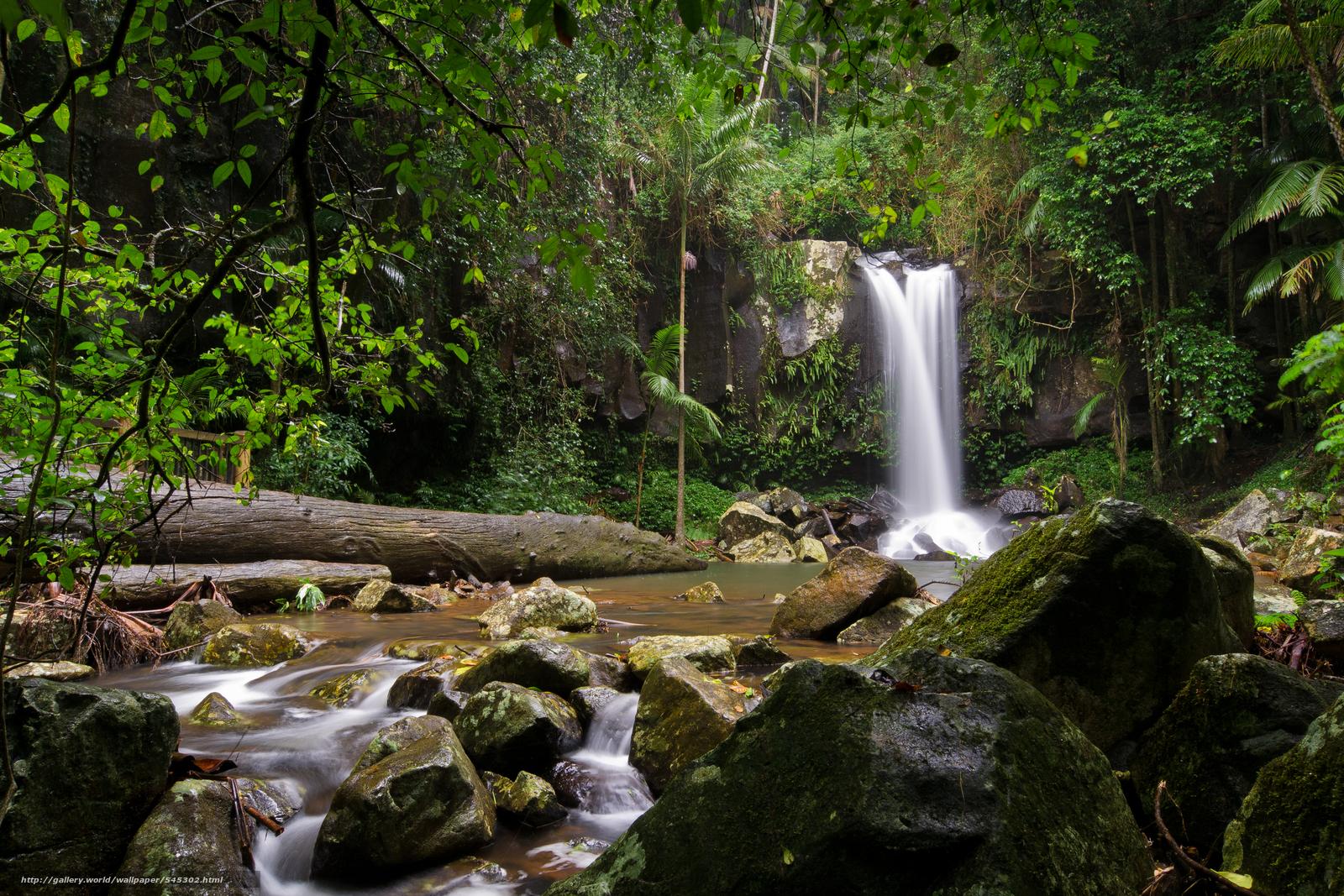 壁紙をダウンロード 滝,  小さな川,  木,  自然 デスクトップの解像度のための無料壁紙 4608x3072 — 絵 №545302