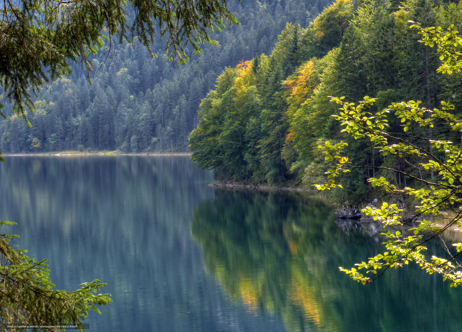 Download wallpaper Lake Eibsee, Bavaria, Germany, Eibsee ...
