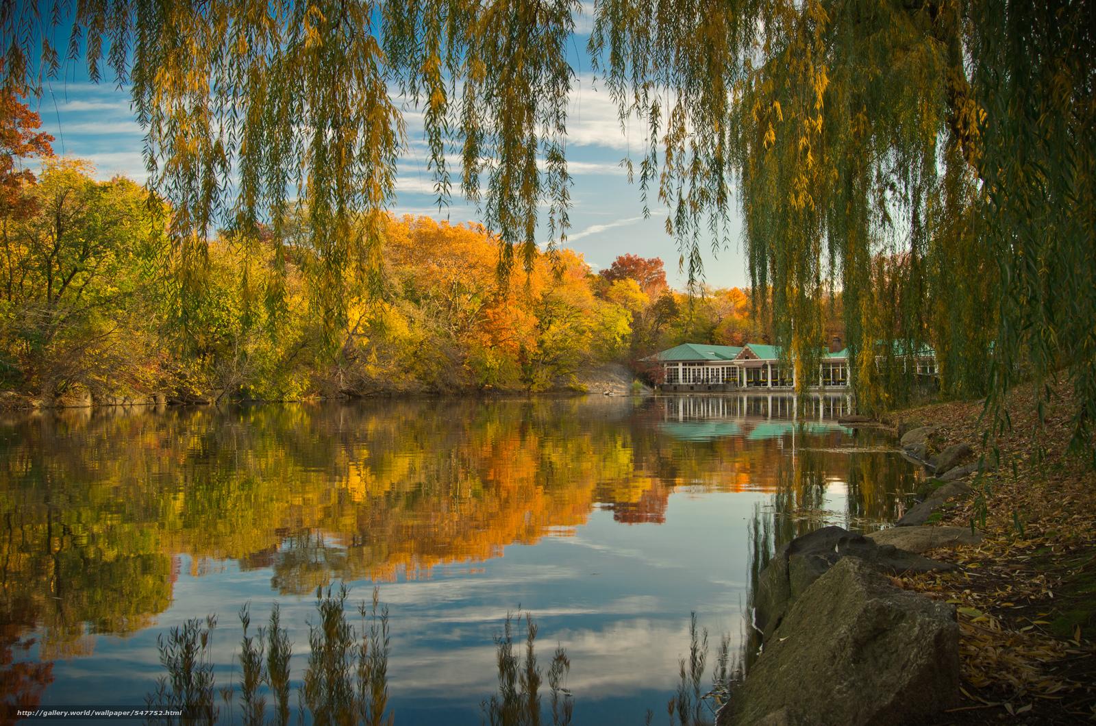 下载壁纸 在纽约中央公园,  秋,  池塘,  树 免费为您的桌面分辨率的壁纸 4928x3264 — 图片 №547752