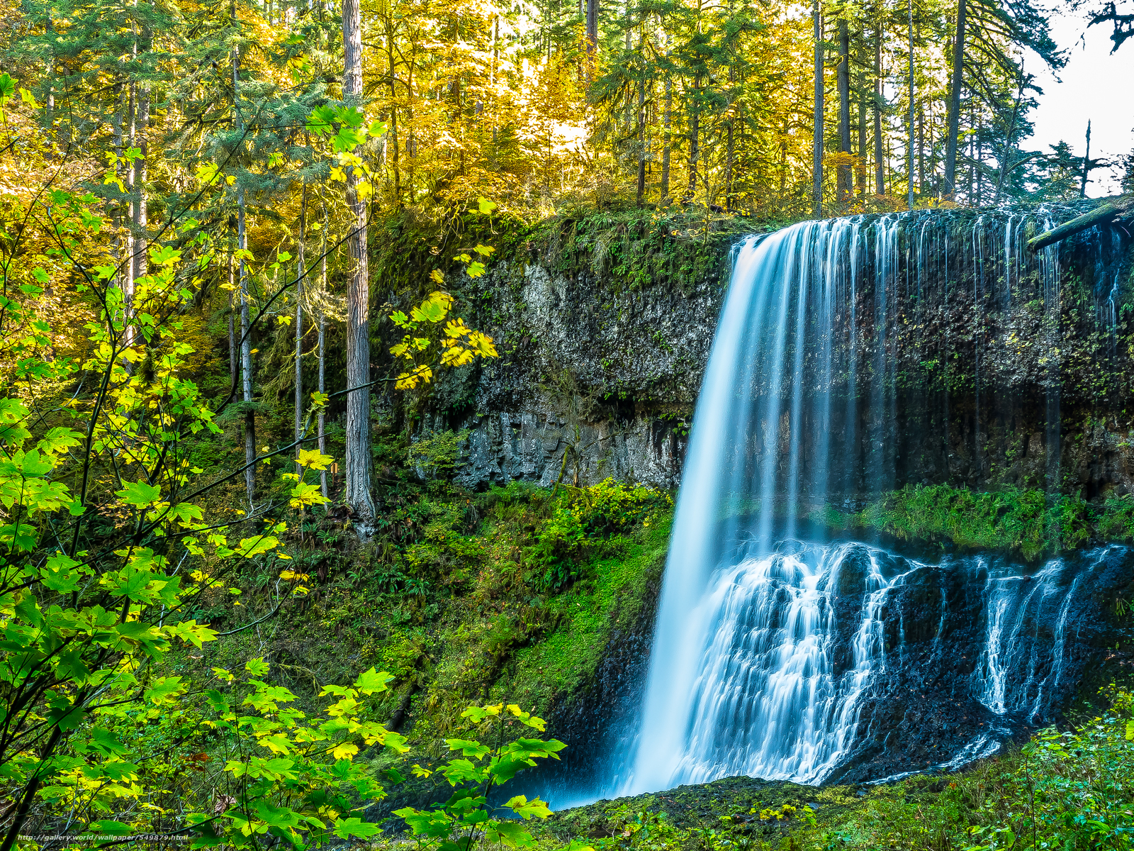 Tlcharger Fond d'ecran automne,  forêt,  arbres,  cascade Fonds d'ecran gratuits pour votre rsolution du bureau 4608x3456 — image №549879