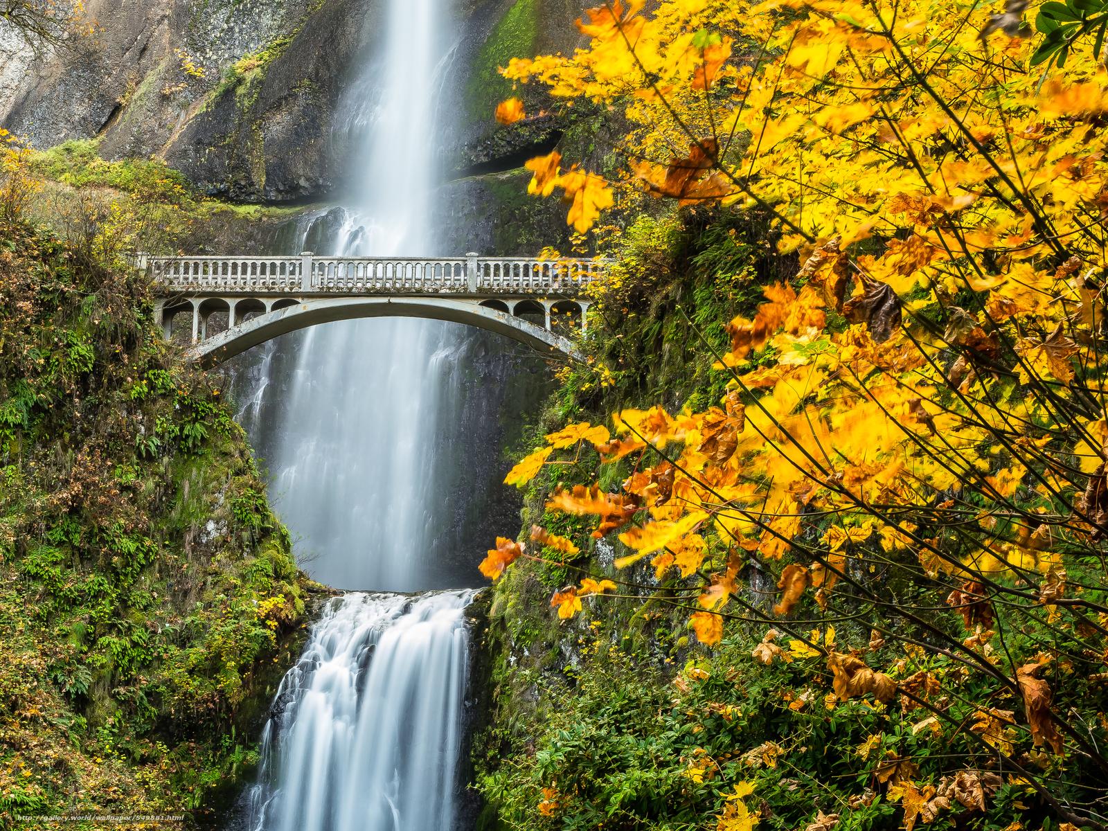 Nature Wallpaper Waterfall Columbia River Oregon: Scaricare Gli Sfondi Multnomah Falls Columbia River Gorge