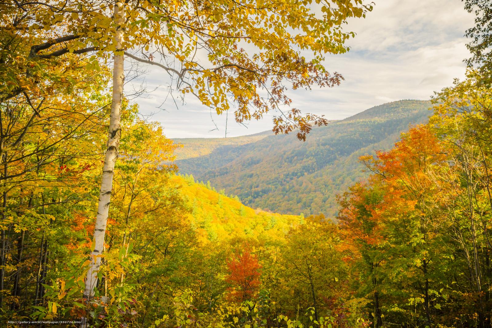 tlcharger fond d 39 ecran automne arbres montagnes paysage fonds d 39 ecran gratuits pour votre. Black Bedroom Furniture Sets. Home Design Ideas