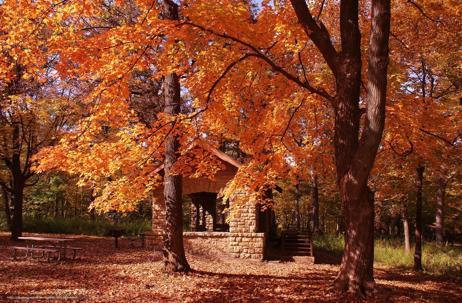 下载壁纸 秋,  公园,  树,  景观 免费为您的桌面分辨率的壁纸 3814x2504 — 图片 №551995