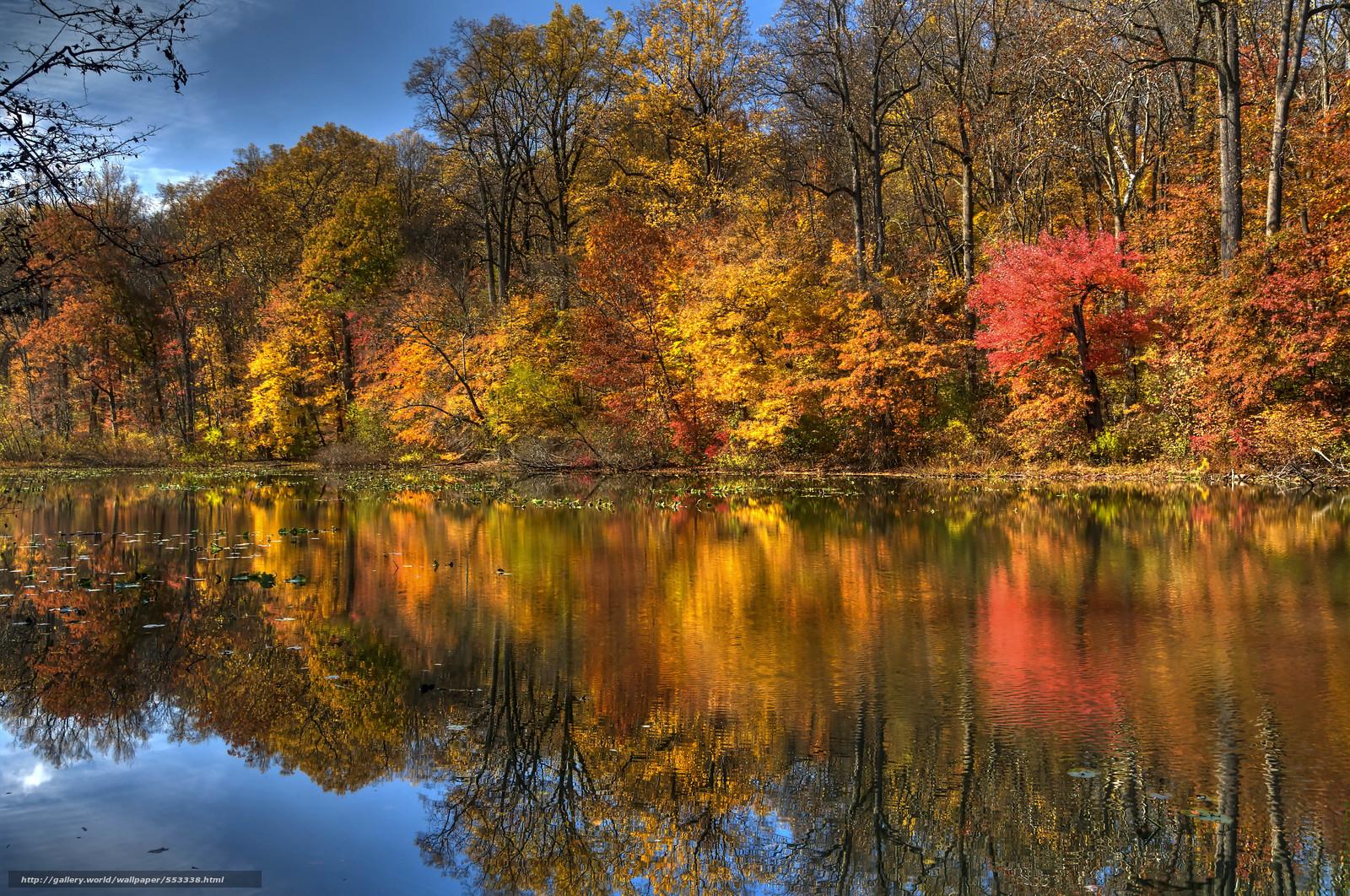 tlcharger fond d 39 ecran automne lac arbres paysage fonds d 39 ecran gratuits pour votre rsolution. Black Bedroom Furniture Sets. Home Design Ideas
