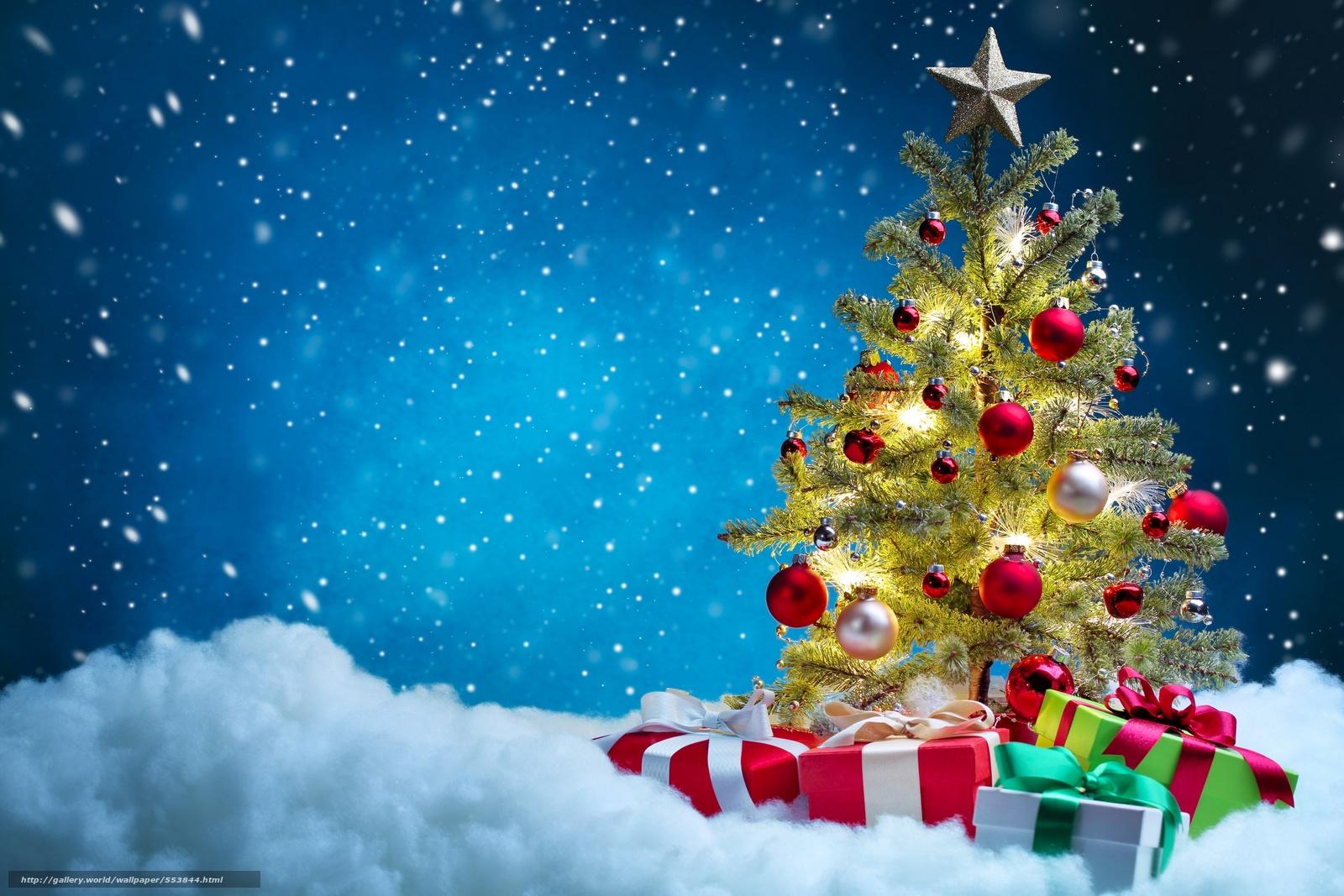 下载壁纸 枞树,  礼品,  箱,  球 免费为您的桌面分辨率的壁纸 4000x2667 — 图片 №553844