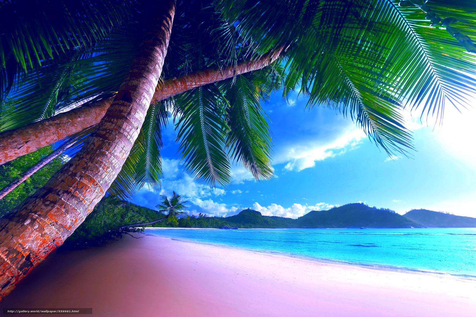Tlcharger fond d 39 ecran c te d 39 plage paradise t fonds for Fond ecran plage gratuit