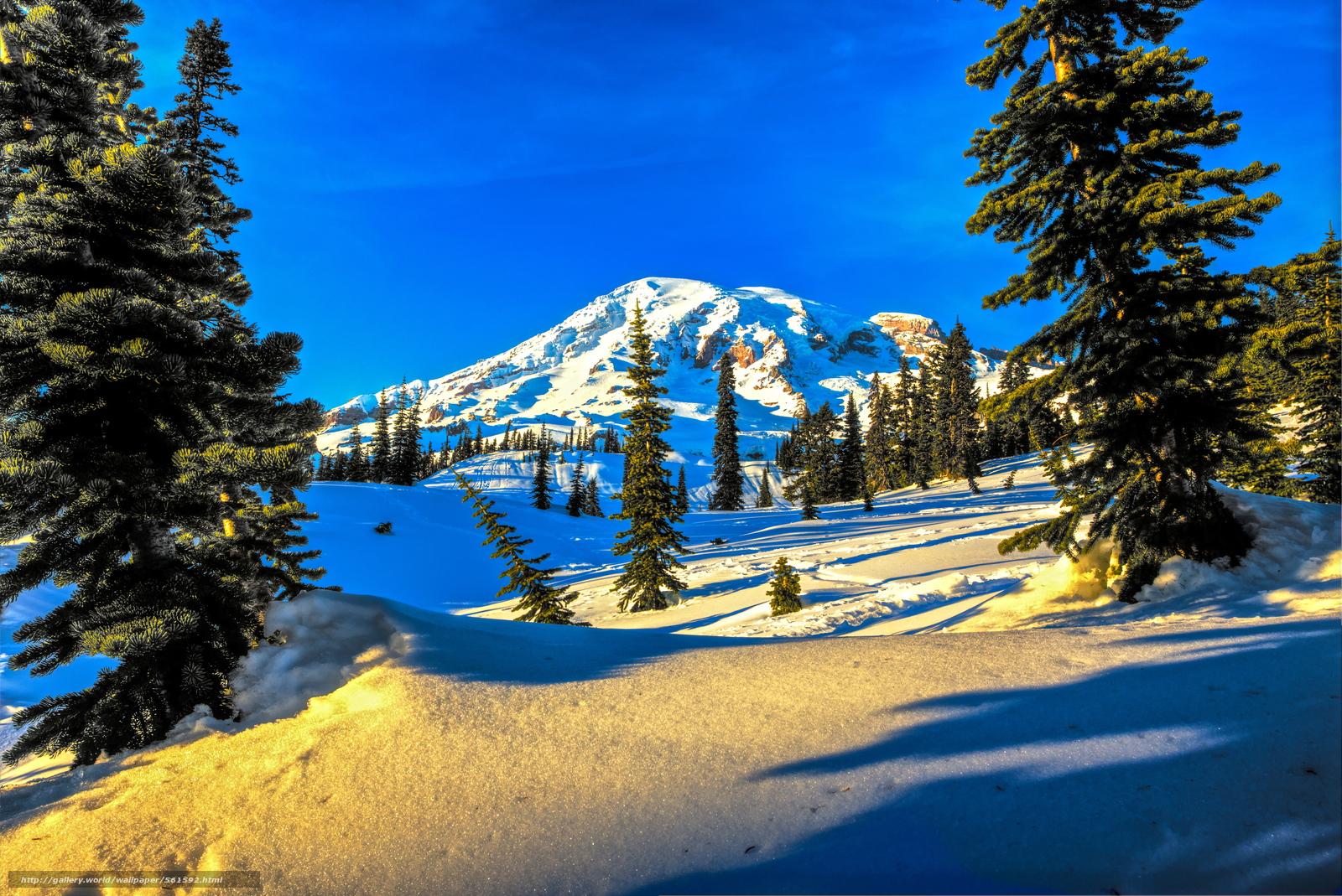 Scaricare gli sfondi alberi inverno montagna paesaggio for Sfondi desktop inverno montagna