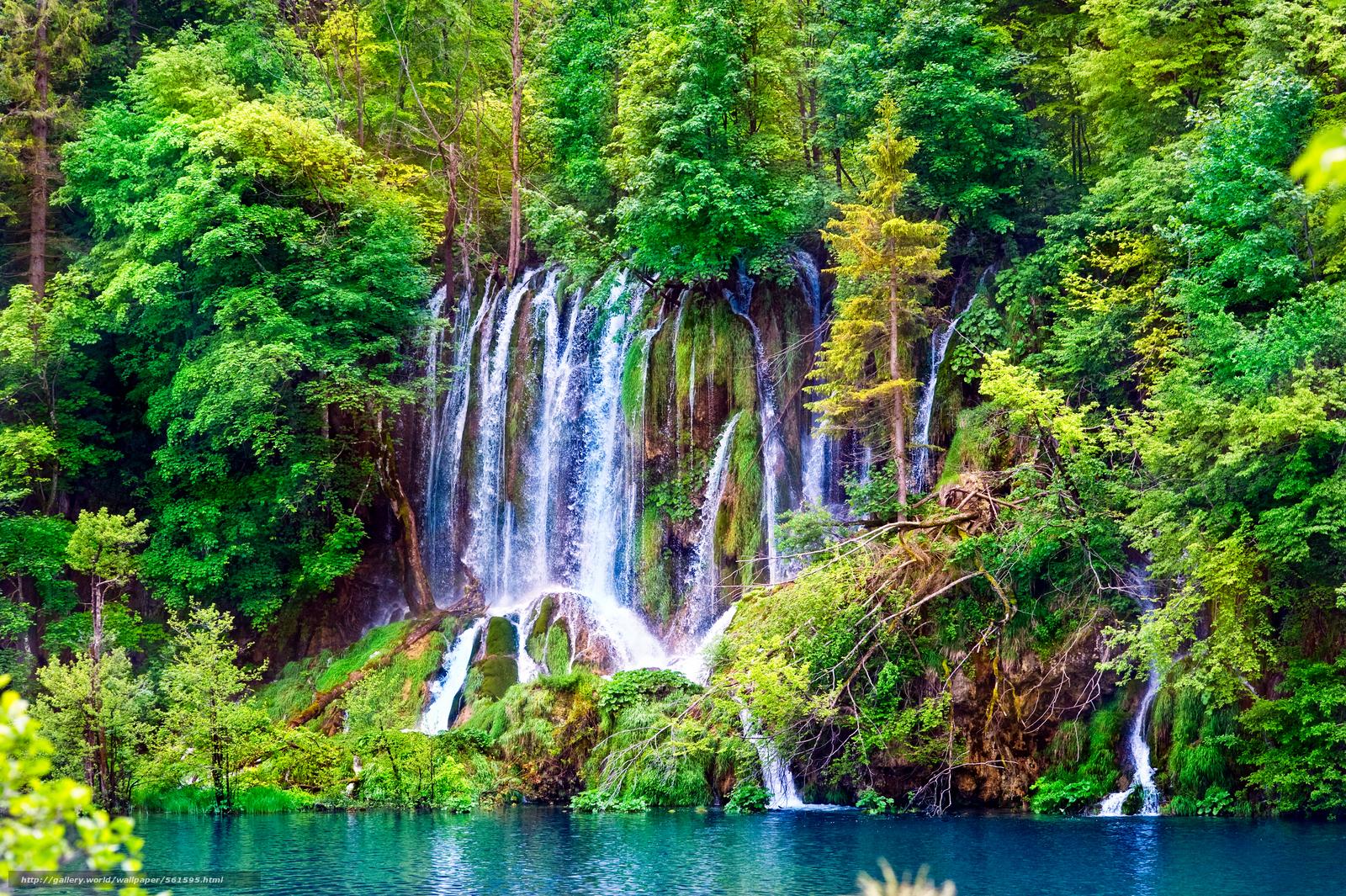 Скачать обои лес,  деревья,  водопад,  пейзаж бесплатно для рабочего стола в разрешении 8512x5664 — картинка №561595
