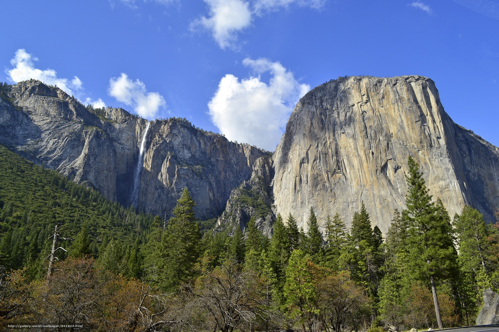 壁紙をダウンロード ヨセミテ国立公園,  山脈,  木,  風景 デスクトップの解像度のための無料壁紙 4608x3072 — 絵 №561855