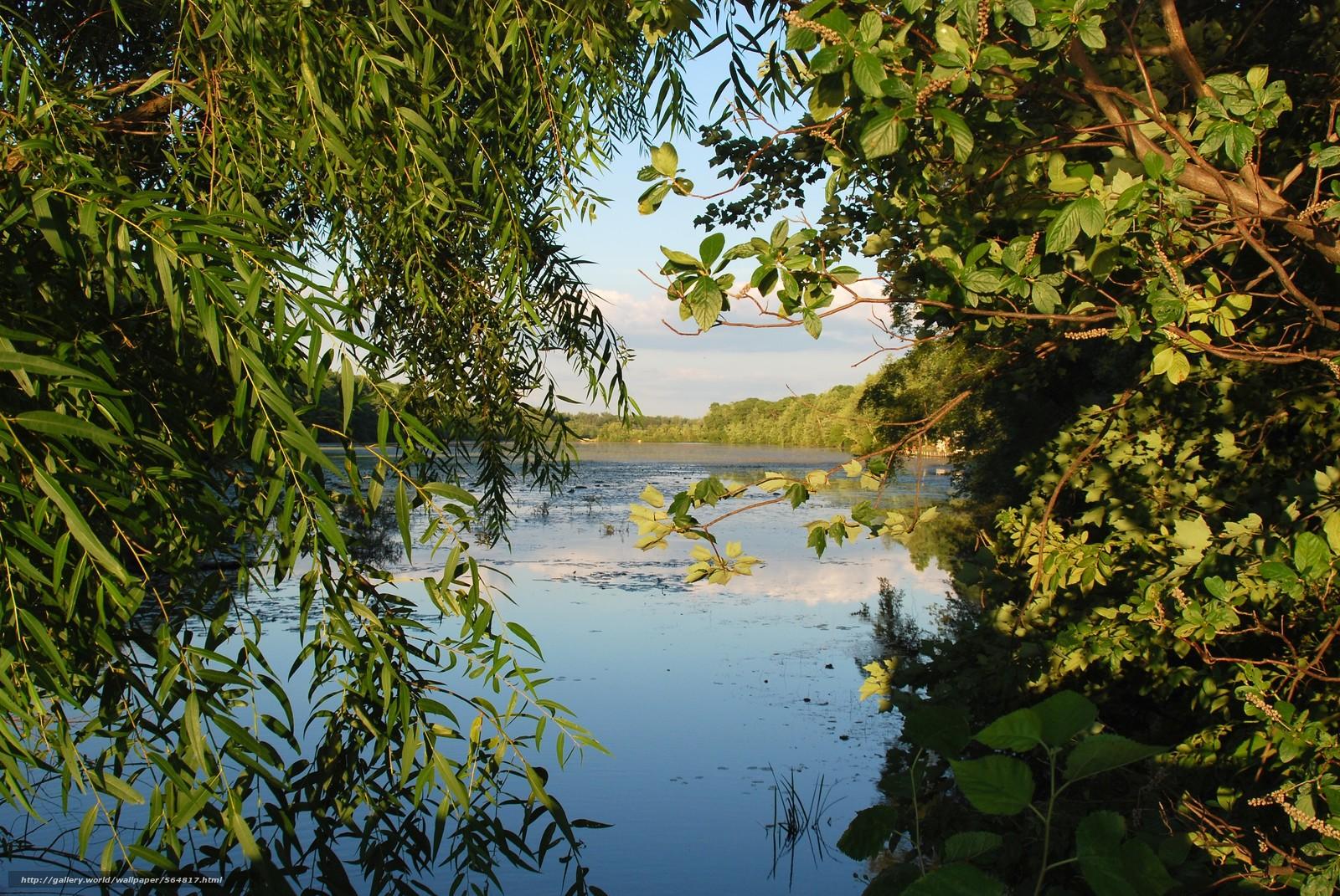 scaricare gli sfondi lago,  alberi,  natura Sfondi gratis per la risoluzione del desktop 3872x2592 — immagine №564817