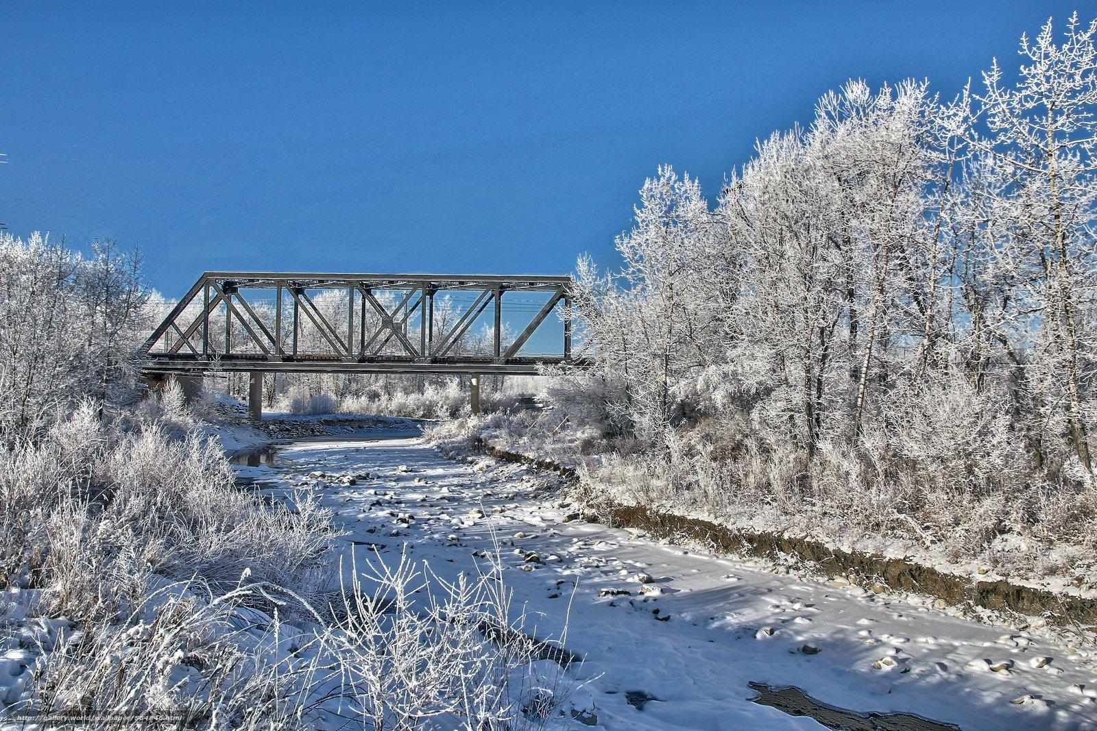 下载壁纸 冬天,  桥,  树,  景观 免费为您的桌面分辨率的壁纸 5181x3454 — 图片 №564846