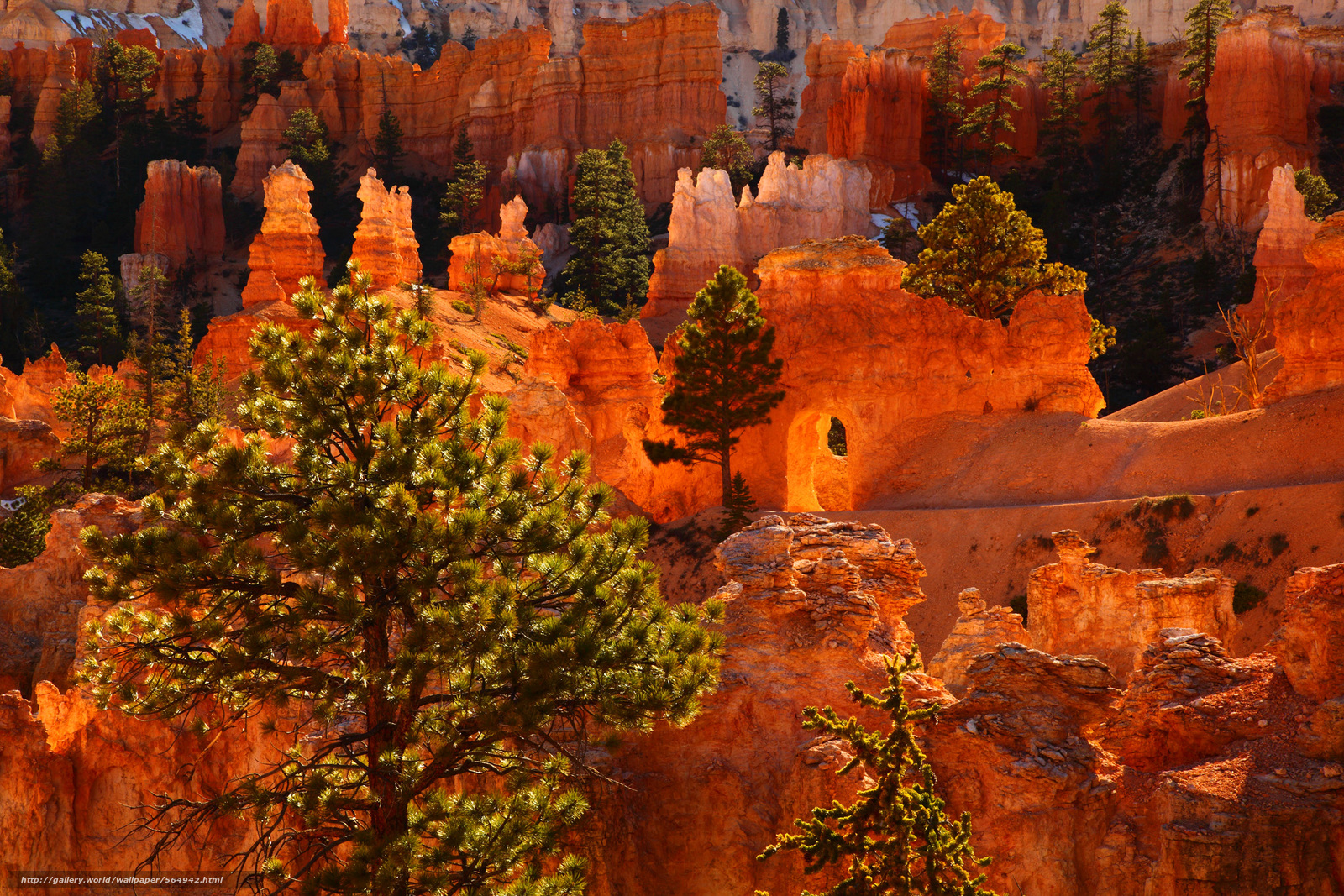 壁紙をダウンロード Loop Bryce Canyon,  国立公園,  ユタ州 デスクトップの解像度のための無料壁紙 2100x1400 — 絵 №564942