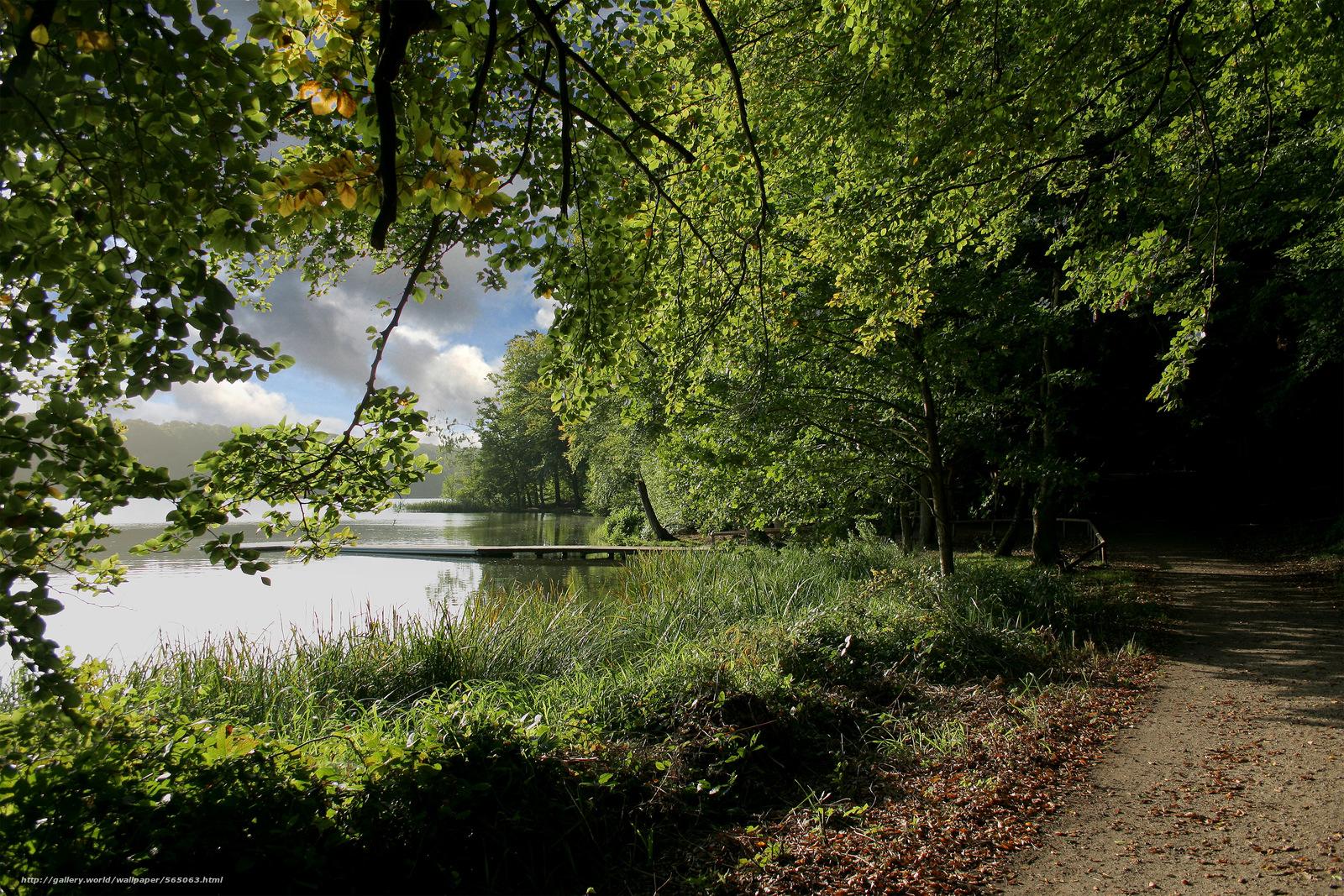 下载壁纸 湖,  树,  道路,  桥 免费为您的桌面分辨率的壁纸 3000x2000 — 图片 №565063