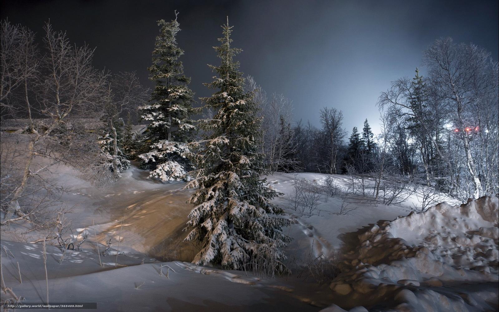 Tlcharger fond d 39 ecran hiver arbres de no l paysage for Paesaggi invernali per desktop