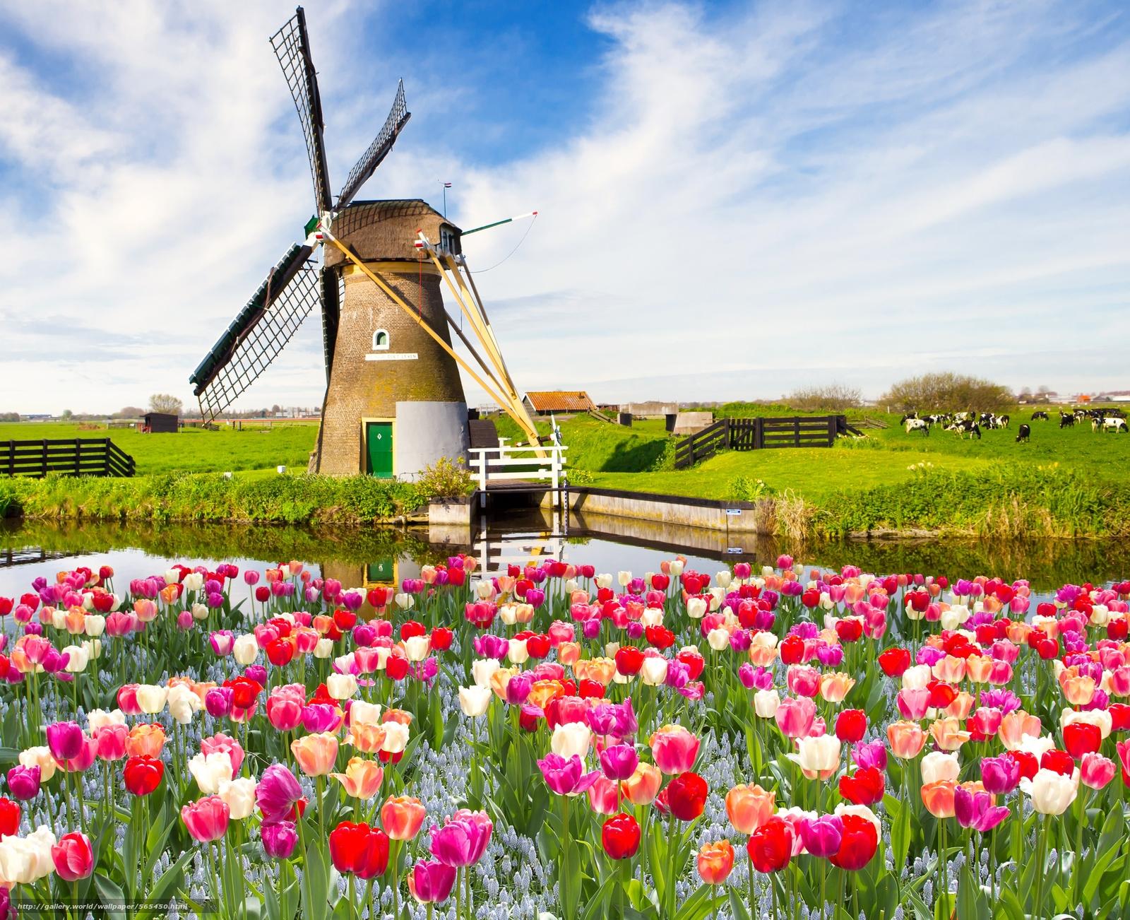 Scaricare gli sfondi paesaggio cielo nuvole primavera for Immagini desktop primavera