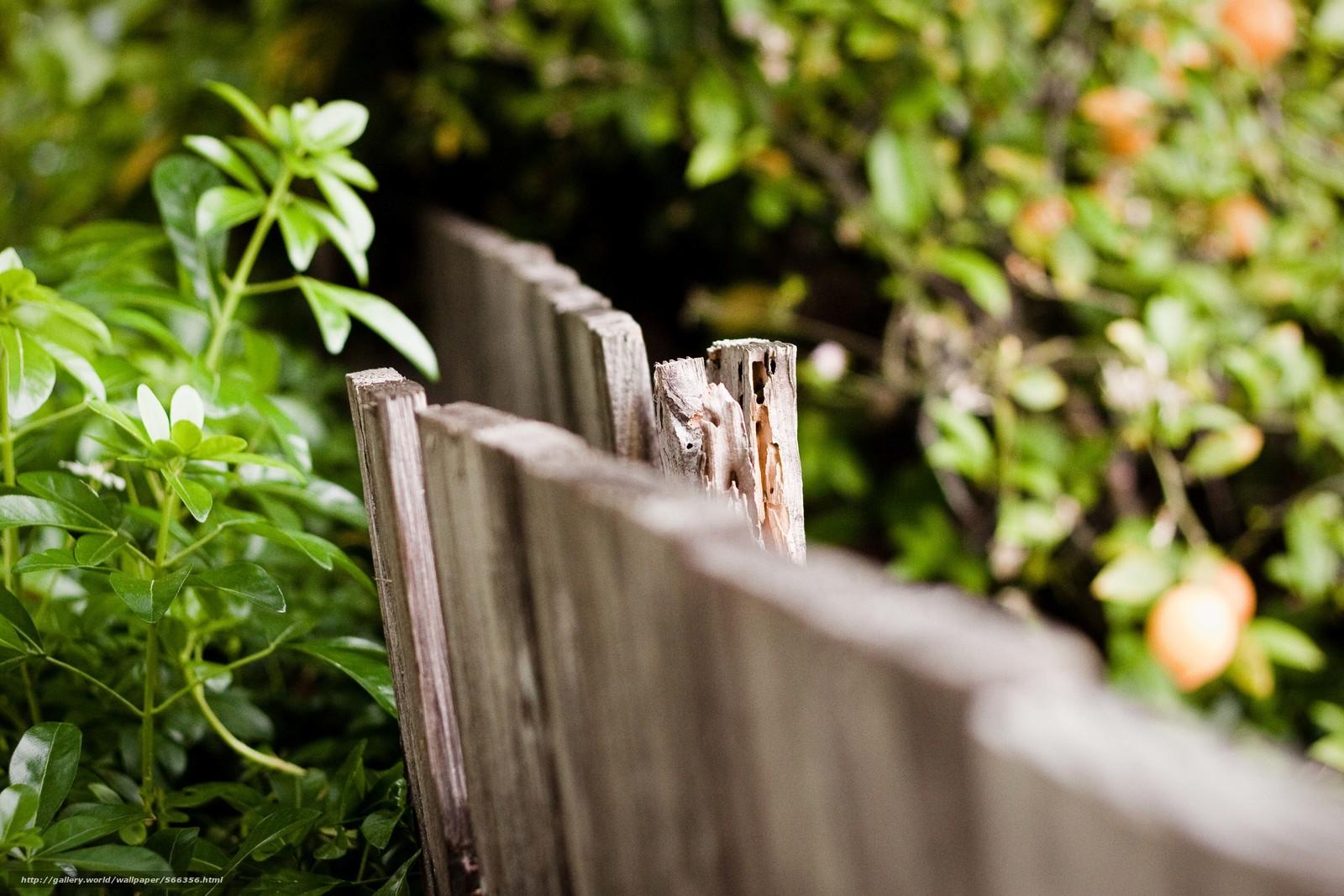 下载壁纸 篱笆,  击剑,  宏,  背景 免费为您的桌面分辨率的壁纸 4752x3168 — 图片 №566356
