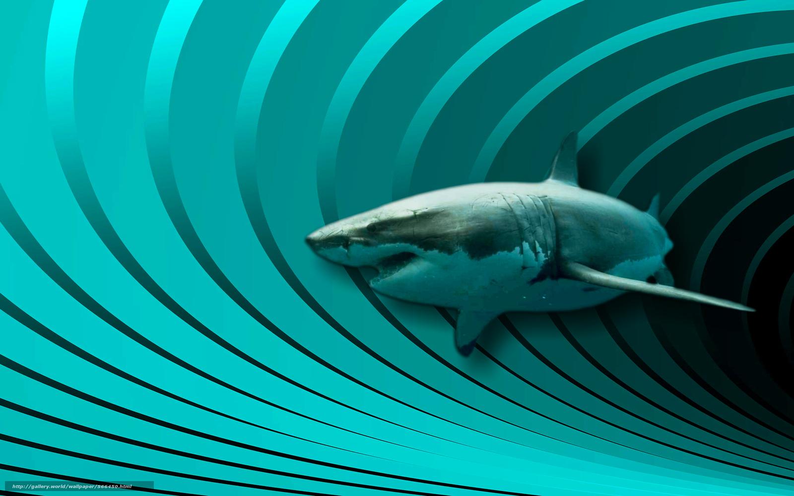 Скачать обои акула,  3d,  art бесплатно для рабочего стола в разрешении 1920x1200 — картинка №566450