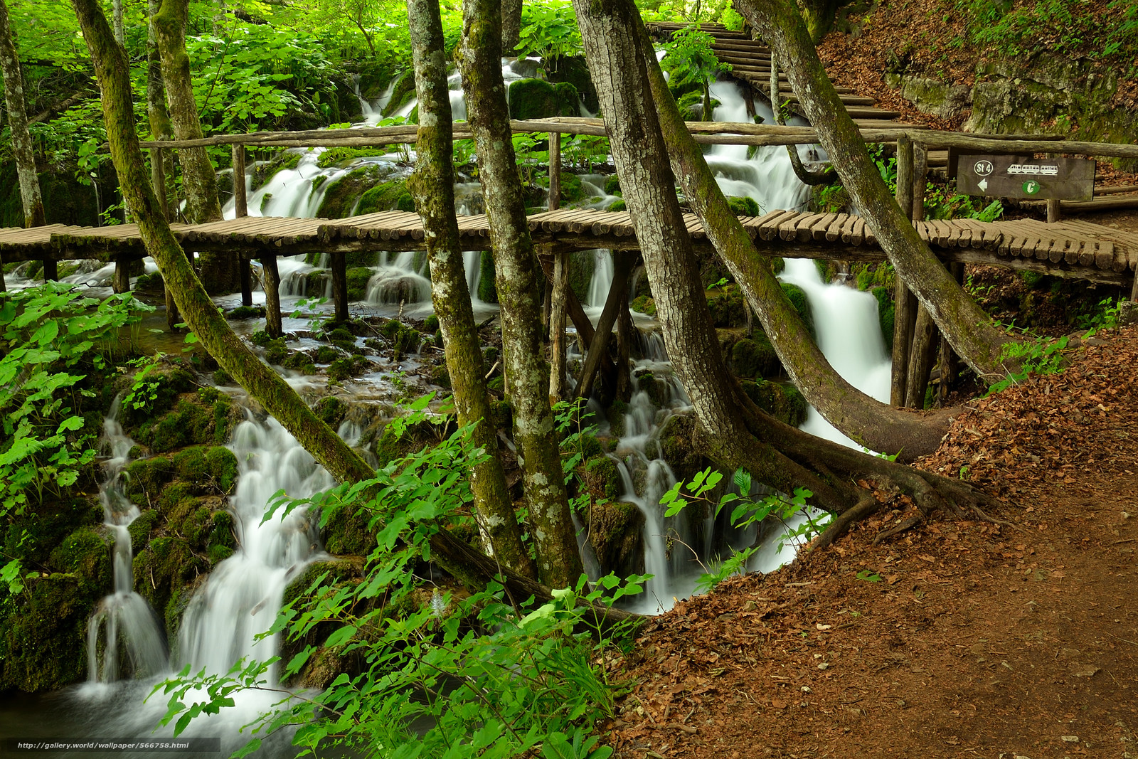 Download wallpaper forest,  trees,  waterfalls,  bridge free desktop wallpaper in the resolution 3820x2547 — picture №566758