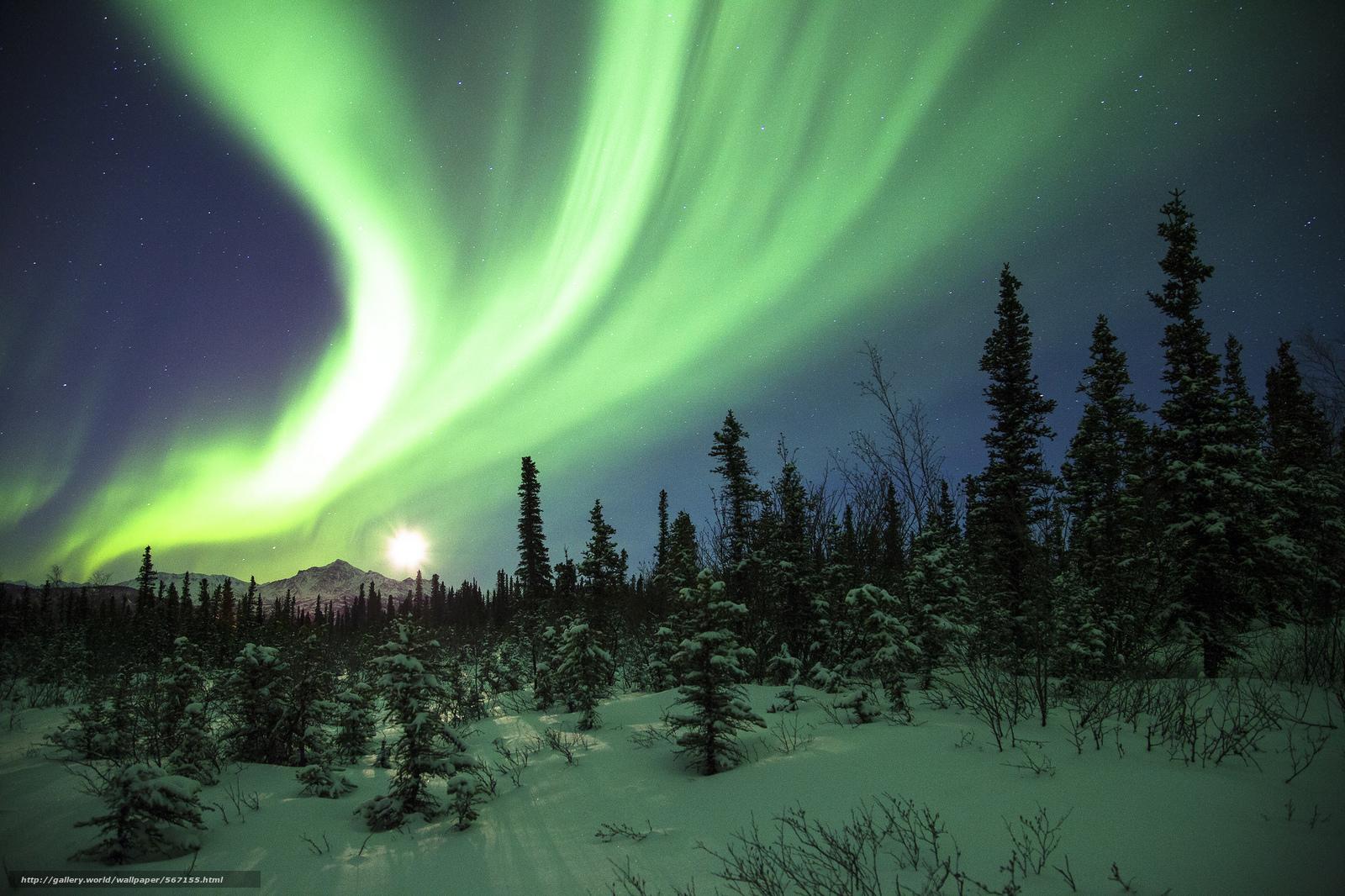Scaricare gli sfondi aurora boreale nevicata notte for Sfondi desktop aurora boreale