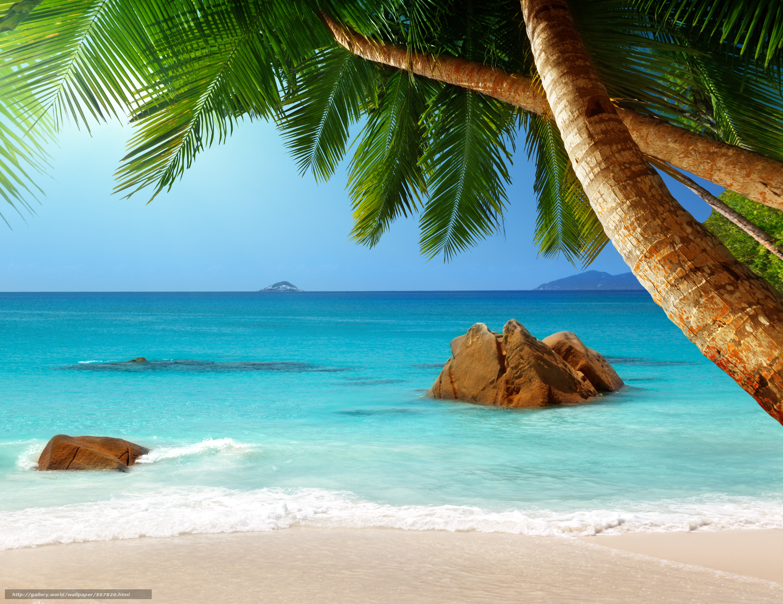 Tlcharger fond d 39 ecran tropical paradise plage paumes for Beach mural wall