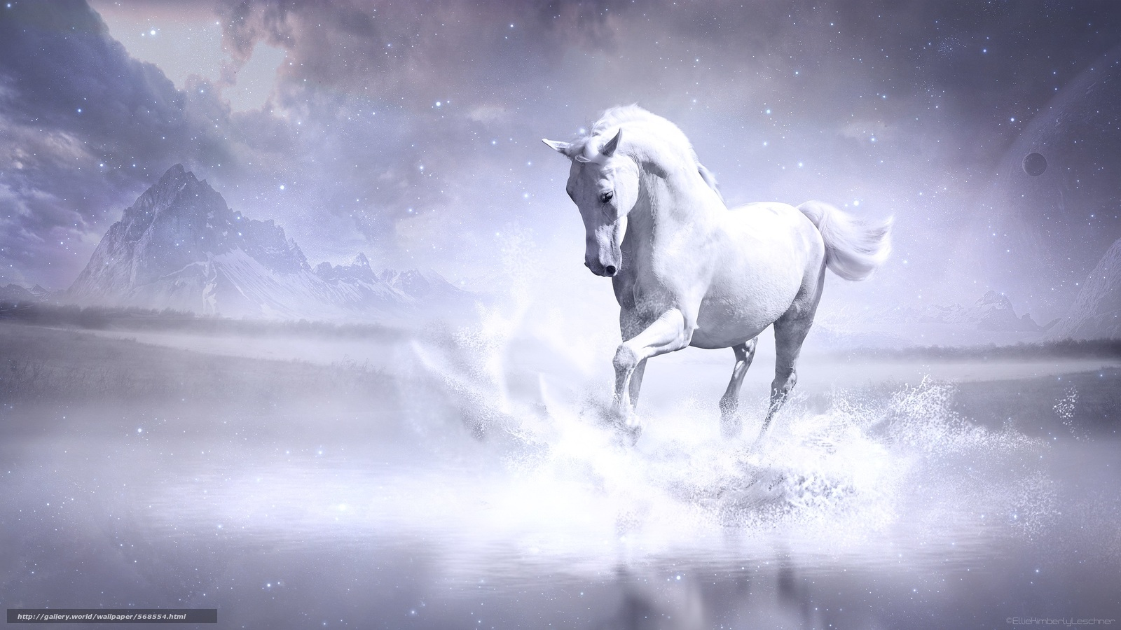 Download Wallpaper Horse Horse 3d Free Desktop Wallpaper In The