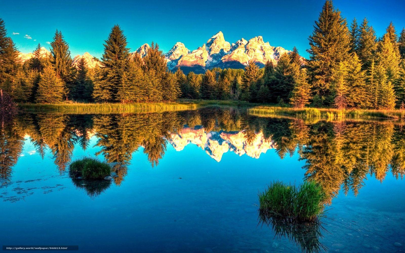 Скачать обои Лес,  озеро,  горы бесплатно для рабочего стола в разрешении 1920x1200 — картинка №568815