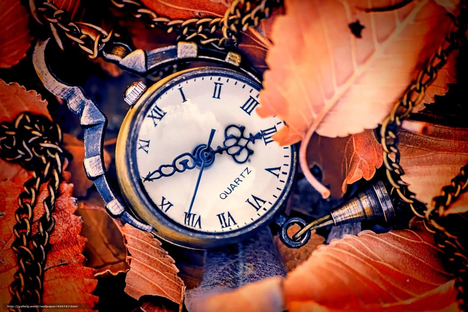 Скачать обои осень,  циферблат,  часы,  листья бесплатно для рабочего стола в разрешении 1920x1281 — картинка №569757