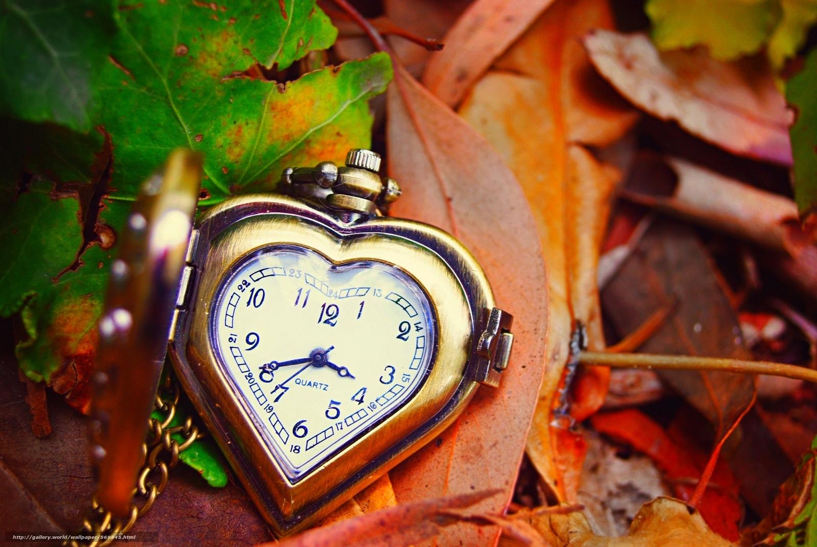 Скачать обои осень,  листья,  часы,  циферблат бесплатно для рабочего стола в разрешении 1920x1285 — картинка №569845