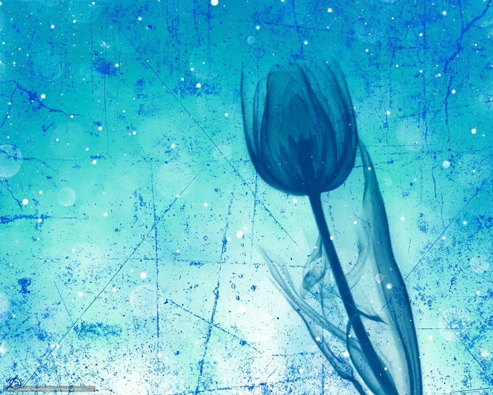 下载壁纸 郁金香,  花,  秆,  触摸 免费为您的桌面分辨率的壁纸 1920x1536 — 图片 №569906