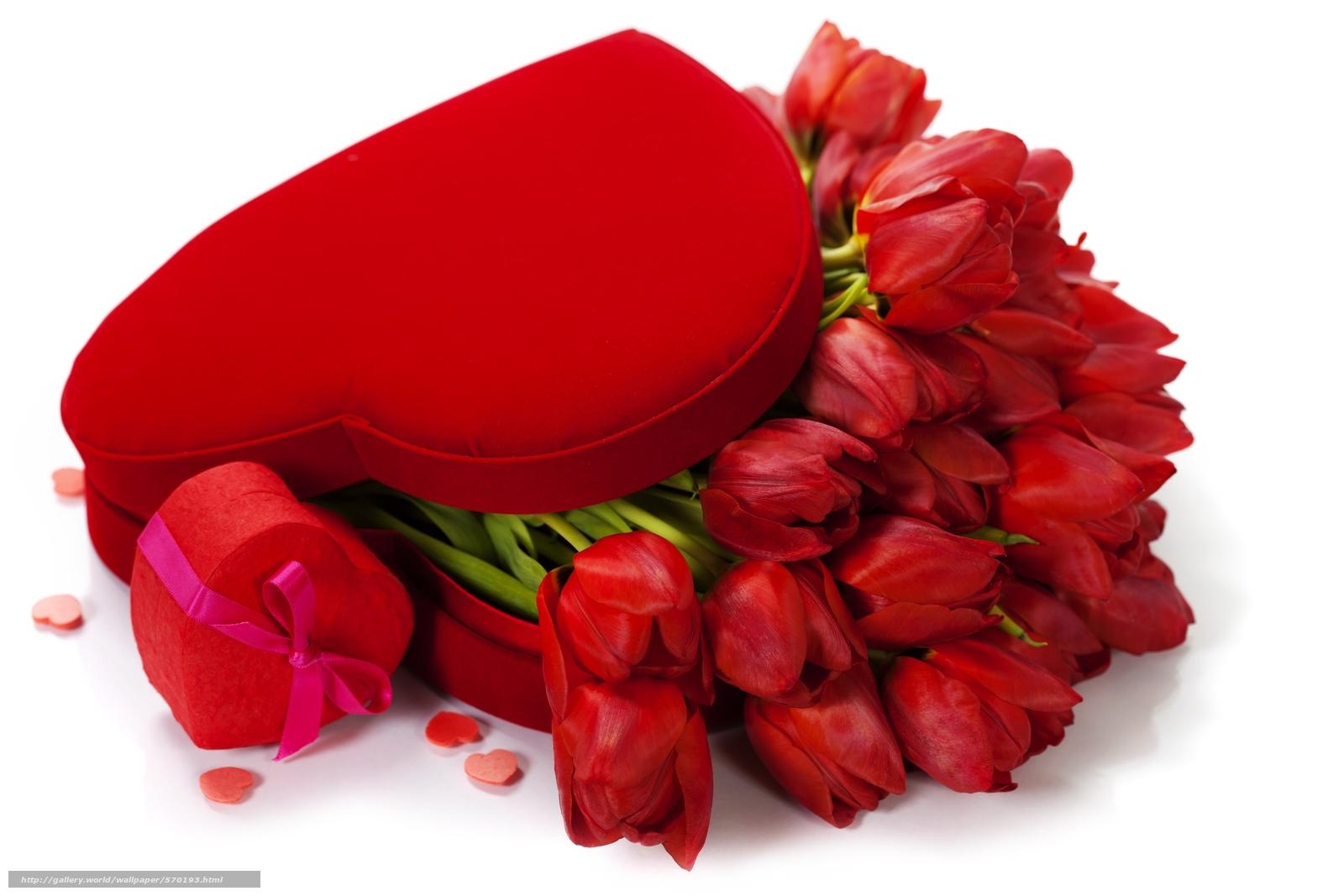 Wallpaper Love Flower Hd