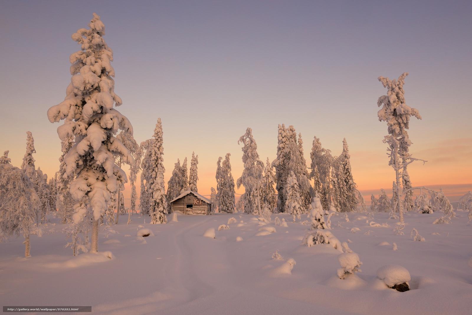scaricare gli sfondi inverno,  nevicata,  cabina,  abete rosso Sfondi gratis per la risoluzione del desktop 2048x1367 — immagine №570351