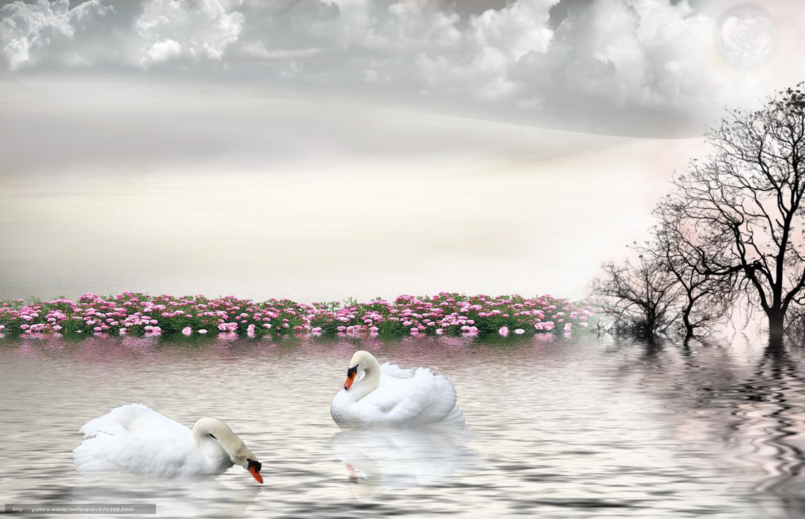 Скачать обои лебеди,  3d,  art бесплатно для рабочего стола в разрешении 5285x3407 — картинка №571308