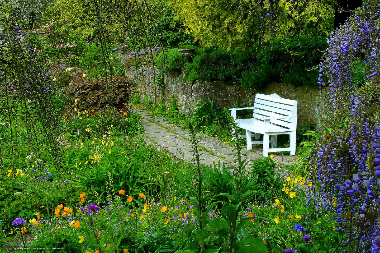 scaricare gli sfondi giardino,  parco,  traccia panchina,  Fiori Sfondi gratis per la risoluzione del desktop 4176x2784 — immagine №571599