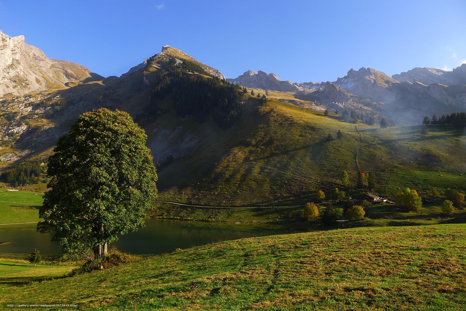 scaricare gli sfondi Montagne,  lago,  Colline,  albero Sfondi gratis per la risoluzione del desktop 3776x2520 — immagine №572971