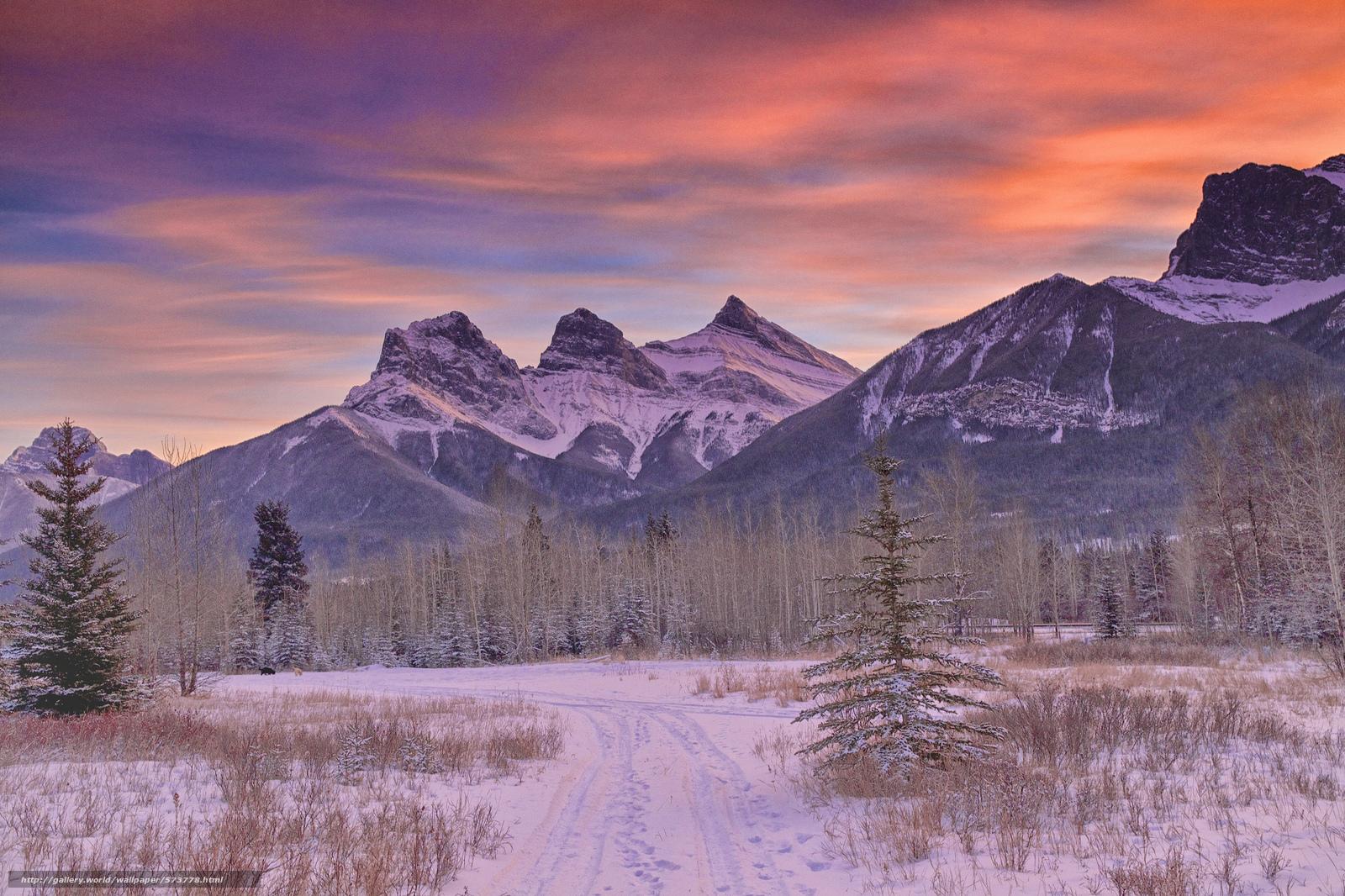 下载壁纸 山,  冬天,  森林,  雪 免费为您的桌面分辨率的壁纸 2048x1365 — 图片 №573778