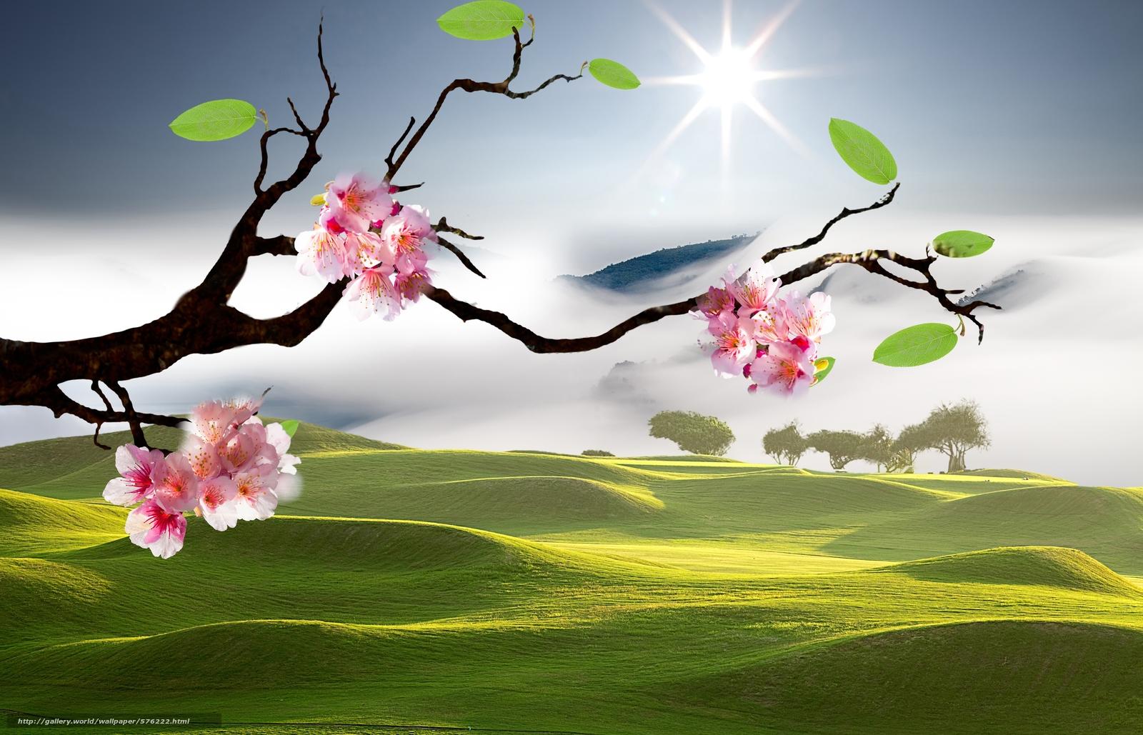 scaricare gli sfondi Paesaggi orientali,  Sakura Sfondi gratis per la risoluzione del desktop 7883x5071 — immagine №576222