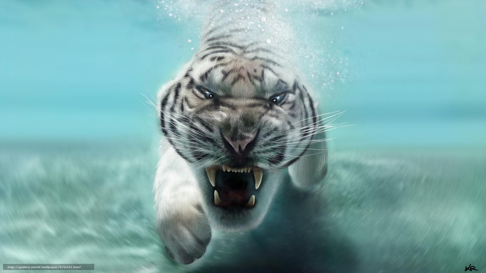 Tlcharger Fond d'ecran mâchoires, prédateur, tigre blanc ...