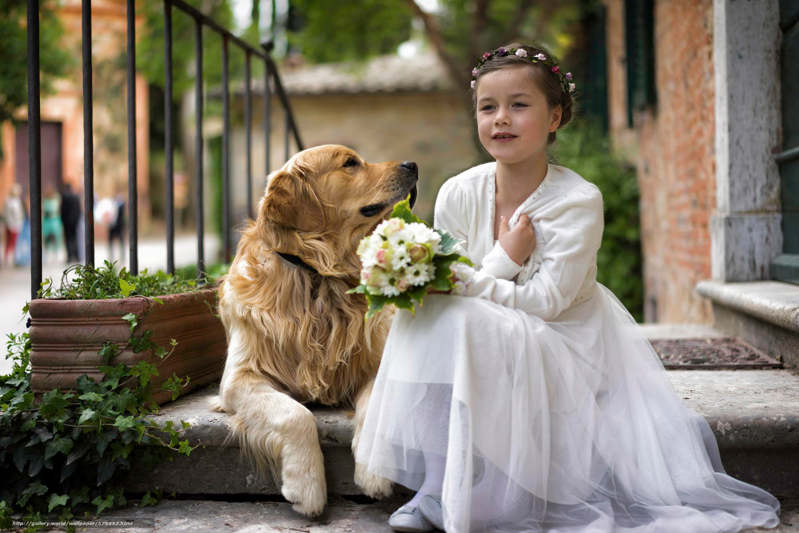 Download wallpaper dog,  girl,  bouquet,  friend free desktop wallpaper in the resolution 2048x1367 — picture №576852