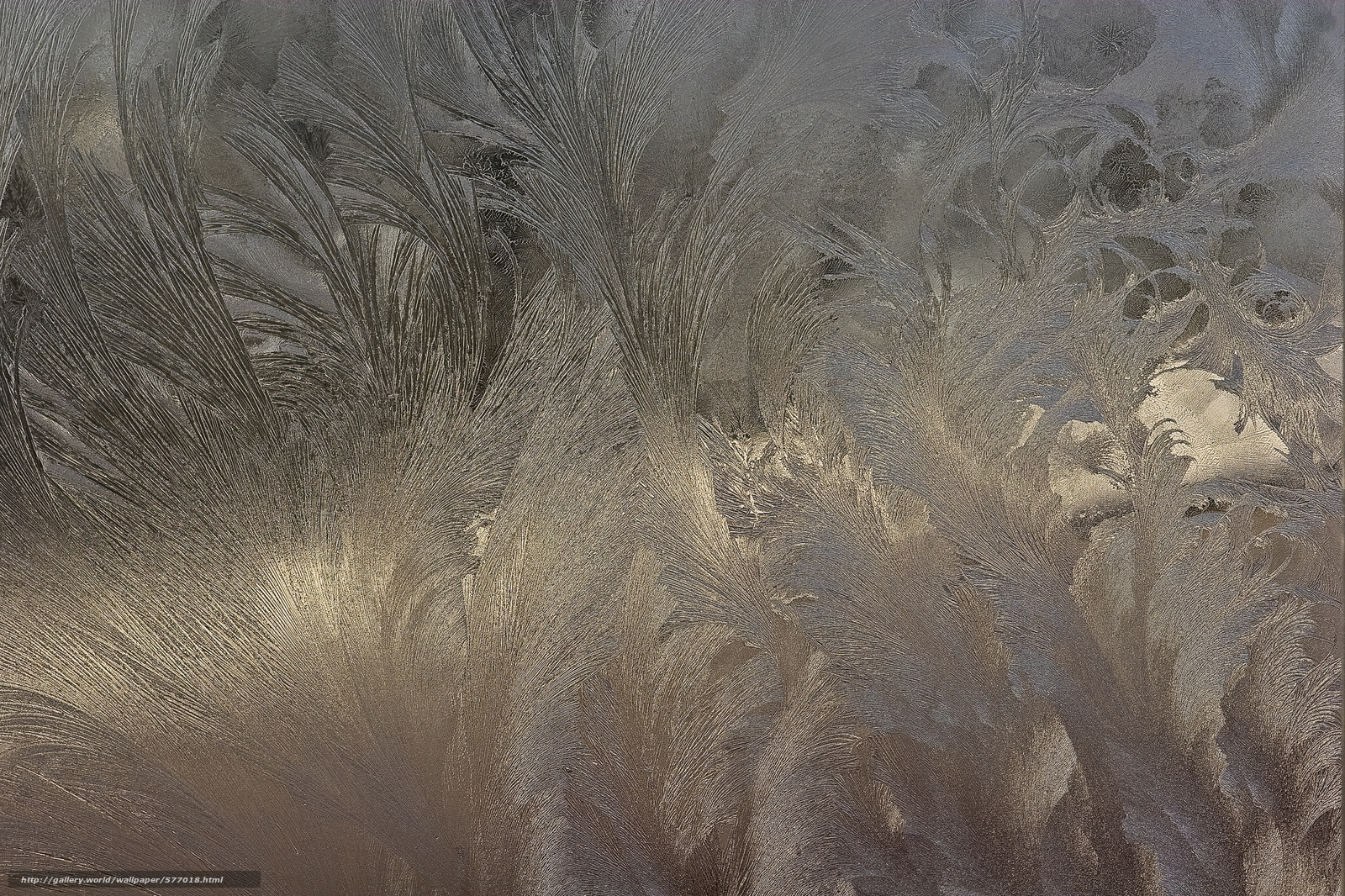 frost on glass wallpapers - photo #14