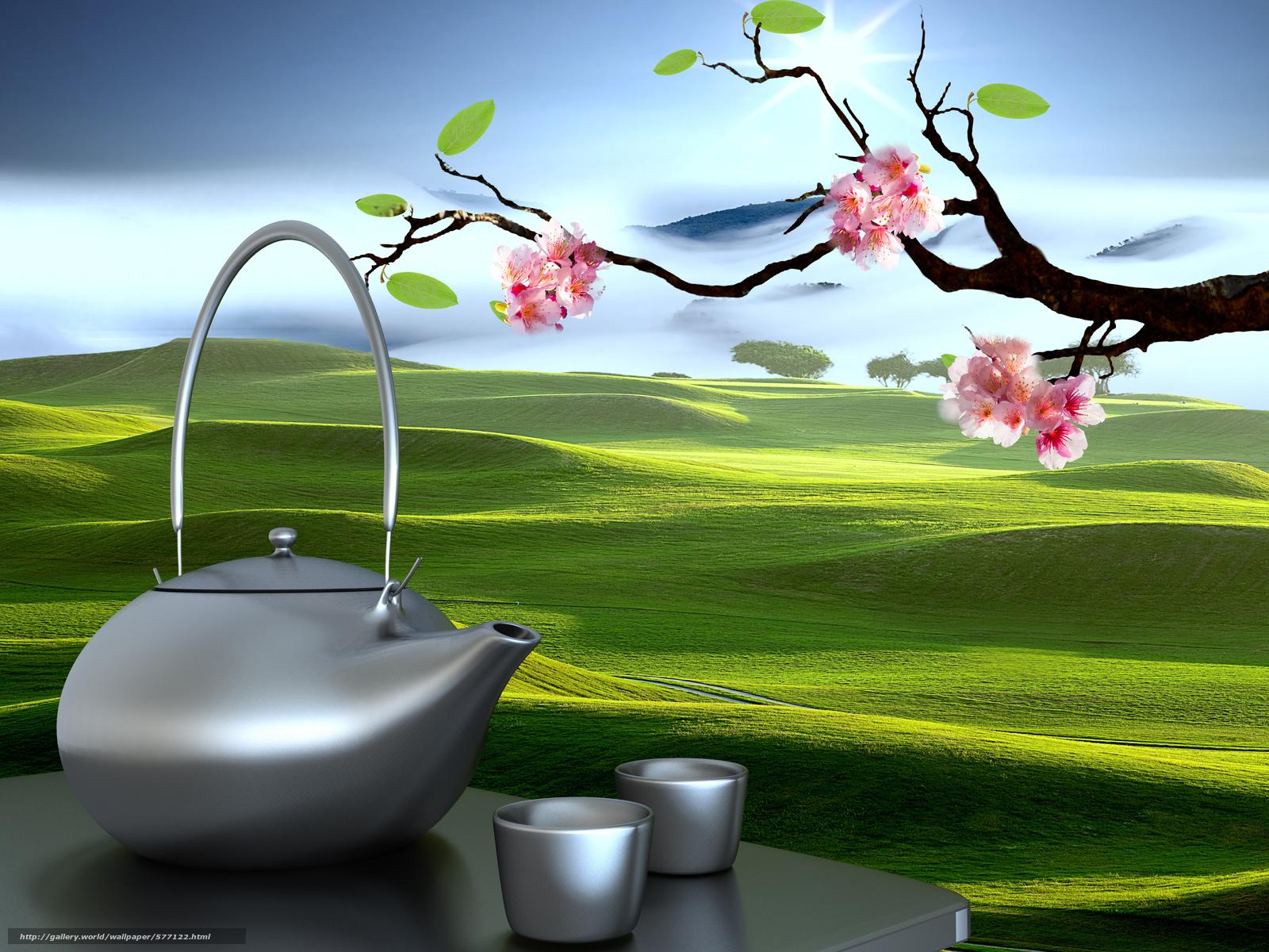 scaricare gli sfondi bollitore,  Paesaggi orientali,  Sakura,  coppe Sfondi gratis per la risoluzione del desktop 8000x6000 — immagine №577122