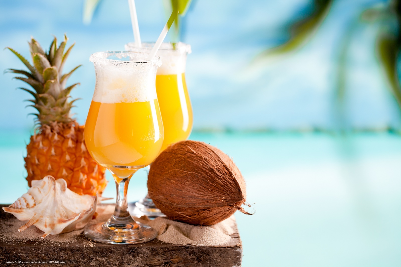 Download wallpaper pineapple,  cocktail,  shell,  coconut free desktop wallpaper in the resolution 3000x2000 — picture №578380