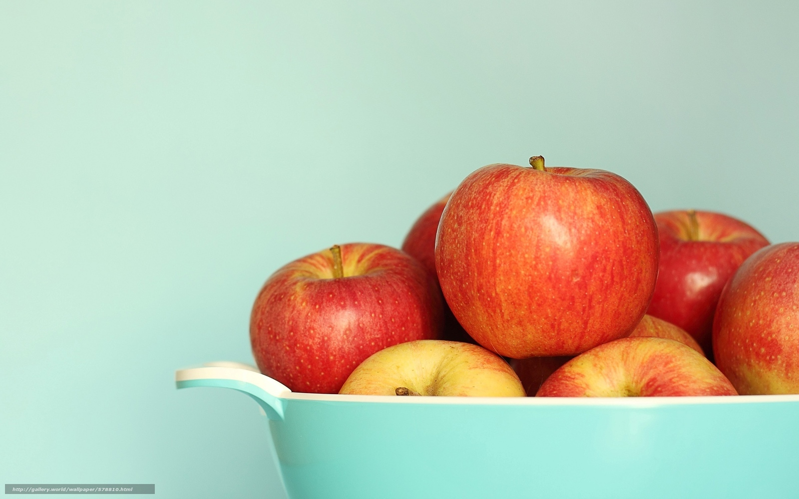 Download wallpaper red,  apple,  plate,  fruit free desktop wallpaper in the resolution 1920x1200 — picture №578810