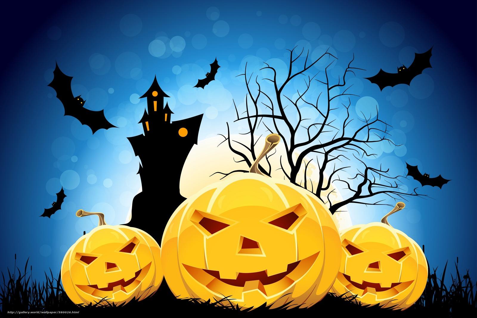 Tlcharger fond d 39 ecran halloween citrouille dr le f te - Image halloween drole ...