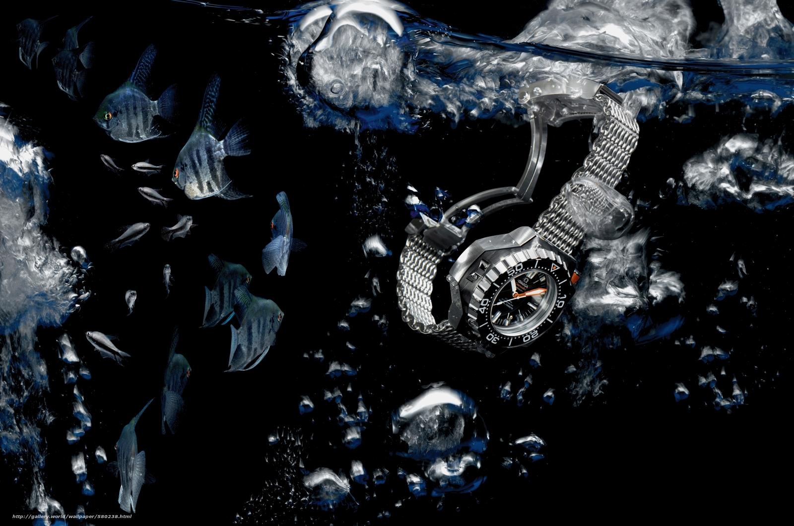 Download wallpaper hi-tech,  watch,  water,  fish free desktop wallpaper in the resolution 4200x2782 — picture №580238
