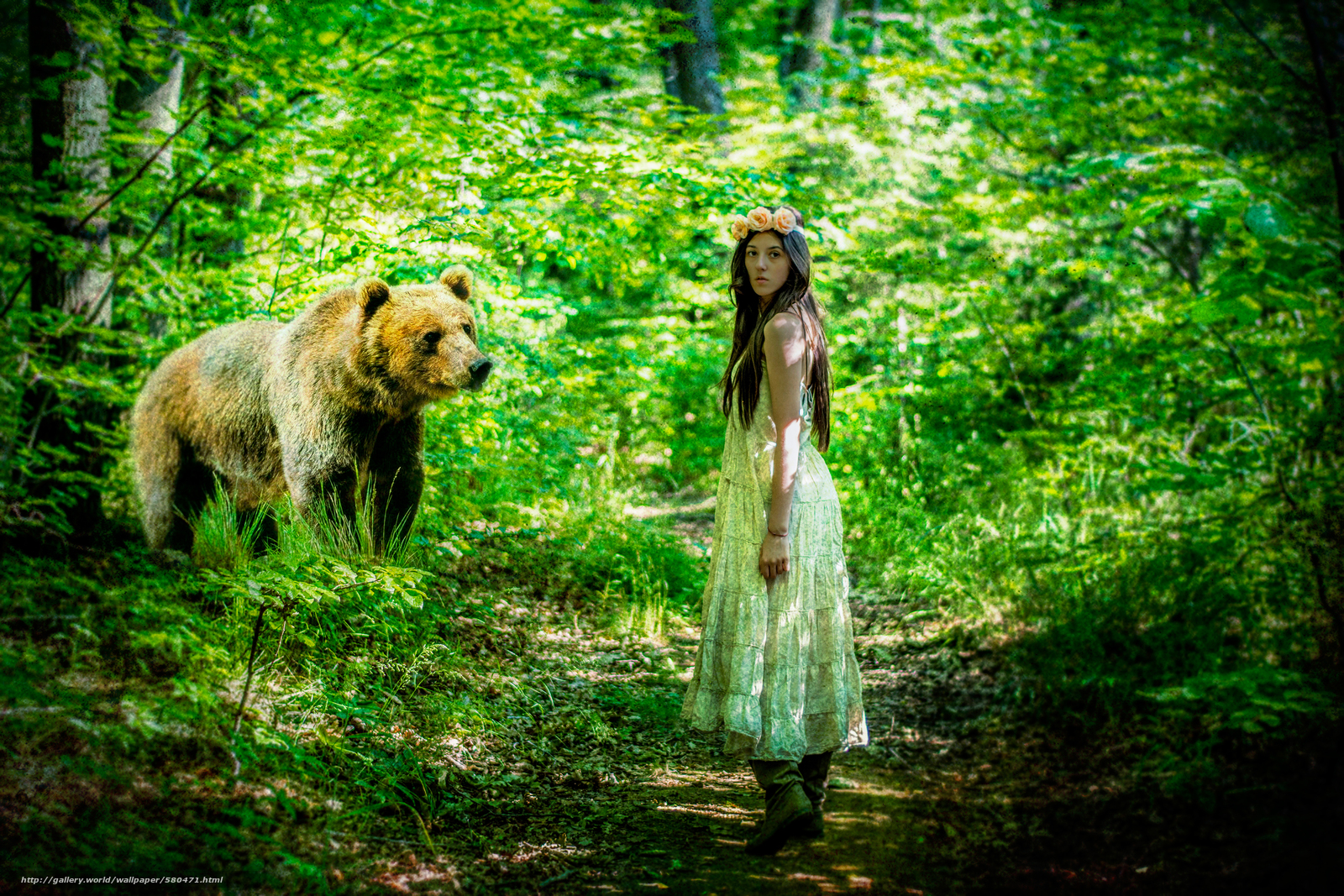 Download wallpaper bear,  forest,  girl free desktop wallpaper in the resolution 4000x2667 — picture №580471