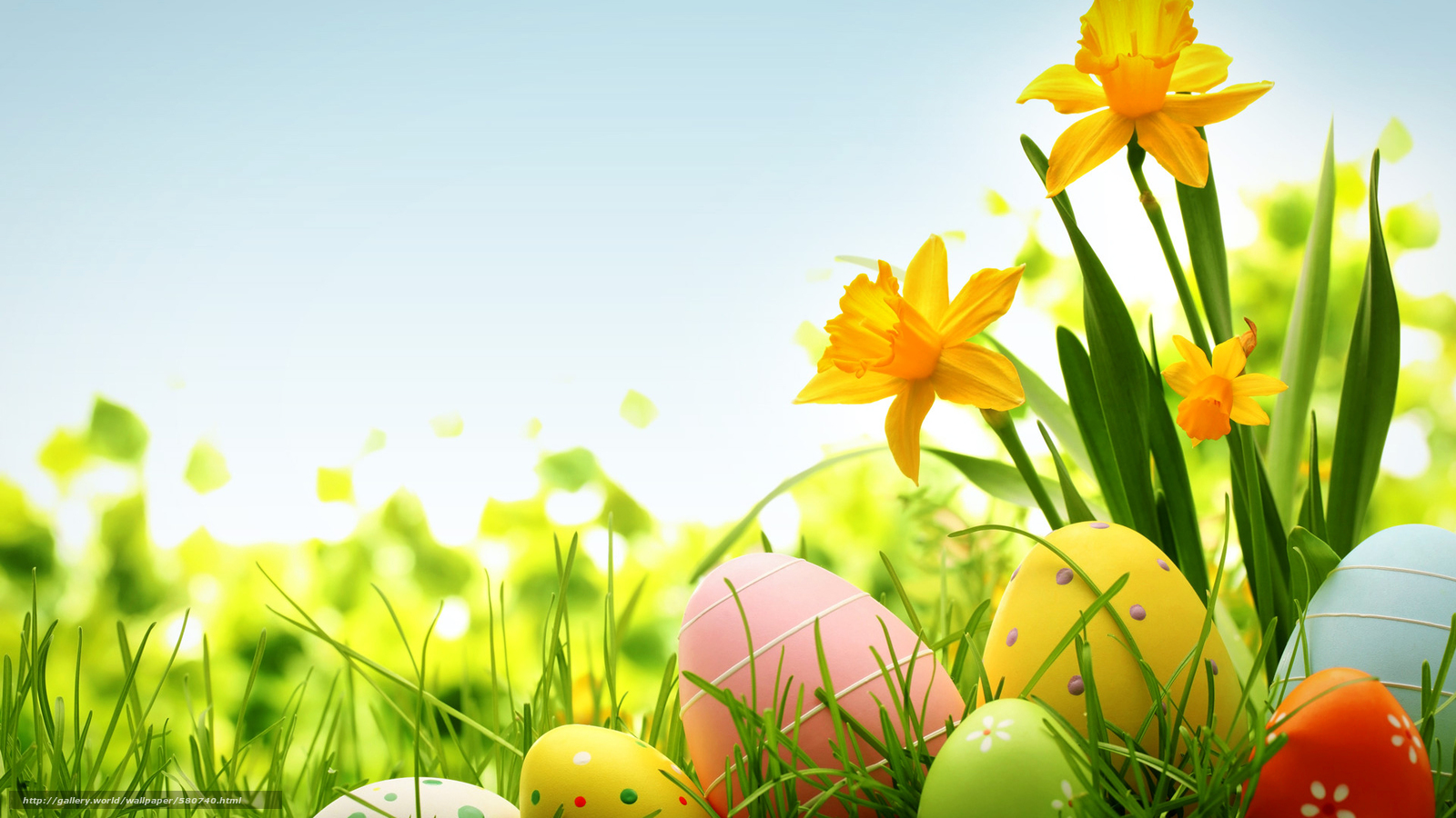 Scaricare gli sfondi primavera fiori pasqua uova sfondi for Immagini gratis per desktop primavera