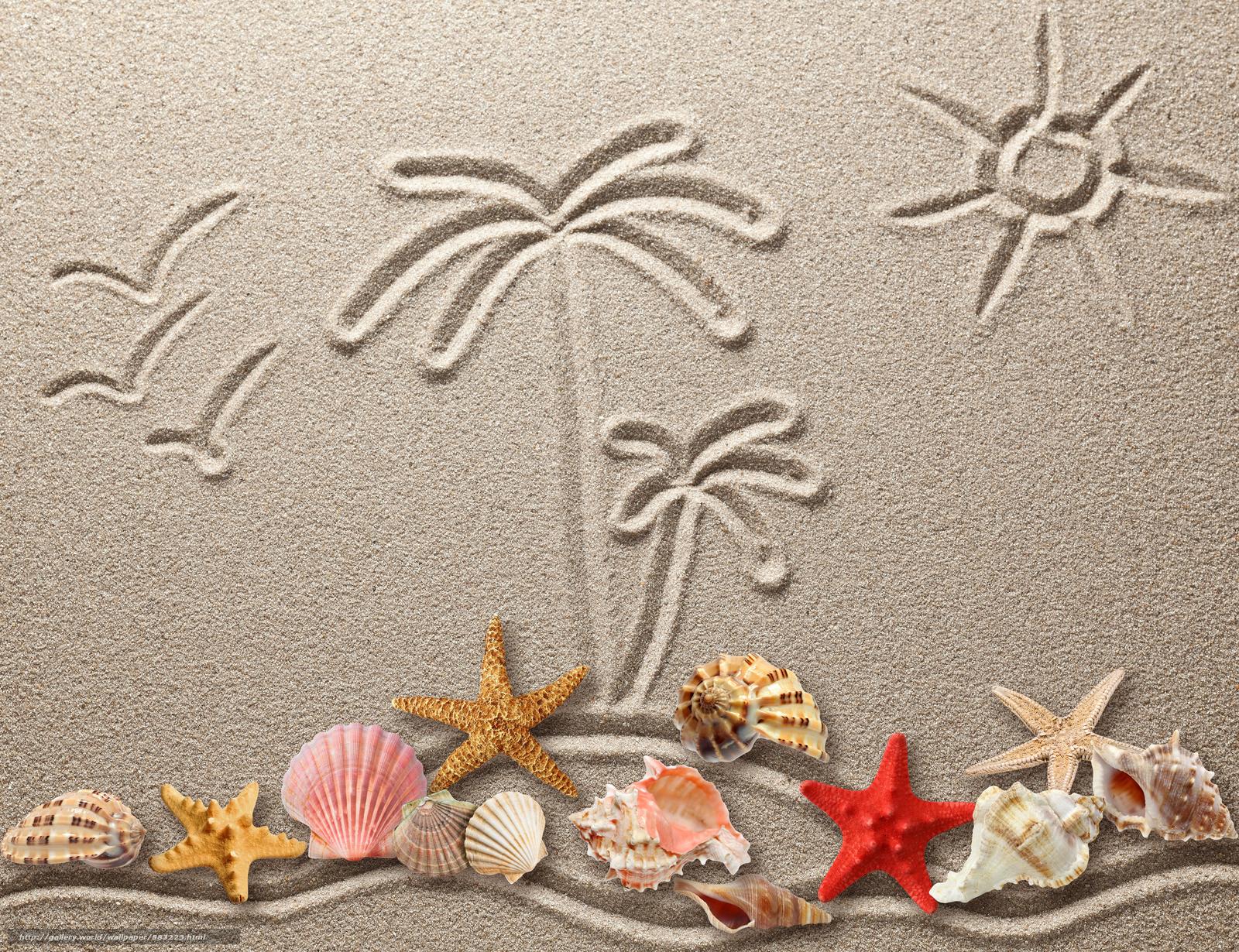 壁紙をダウンロード 貝殻 砂 描画 デスクトップの解像度のための無料壁紙 5000x3844 絵 5223
