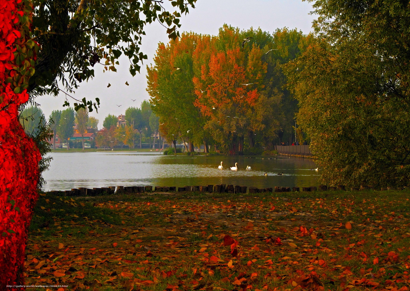 Download wallpaper Mantua,  lake,  Lombardy,  foliage free desktop wallpaper in the resolution 2000x1420 — picture №583635