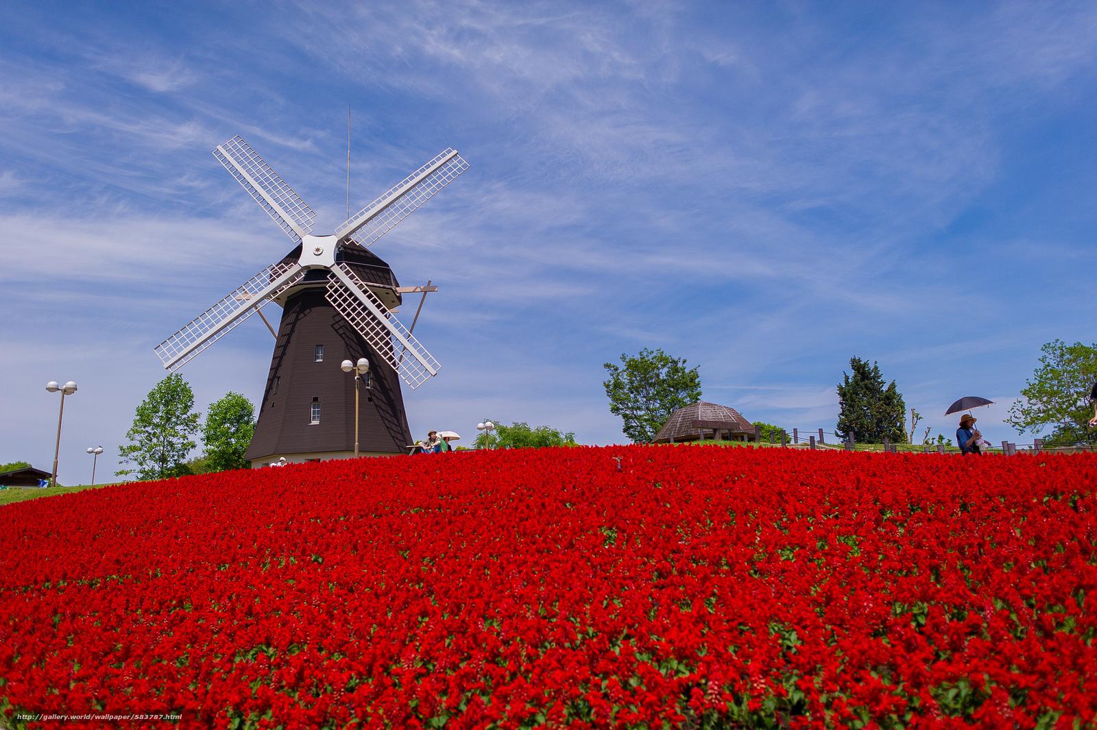 Скачать обои парк,  цветы,  Япония,  мельница бесплатно для рабочего стола в разрешении 2048x1363 — картинка №583787